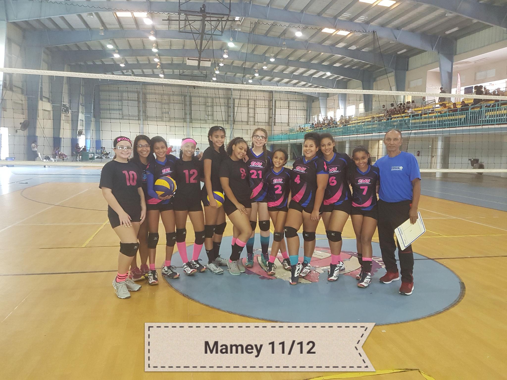 MAMEY DE GUAYNABO SUBCAMPEON EN 11 Y 12 AÑOS