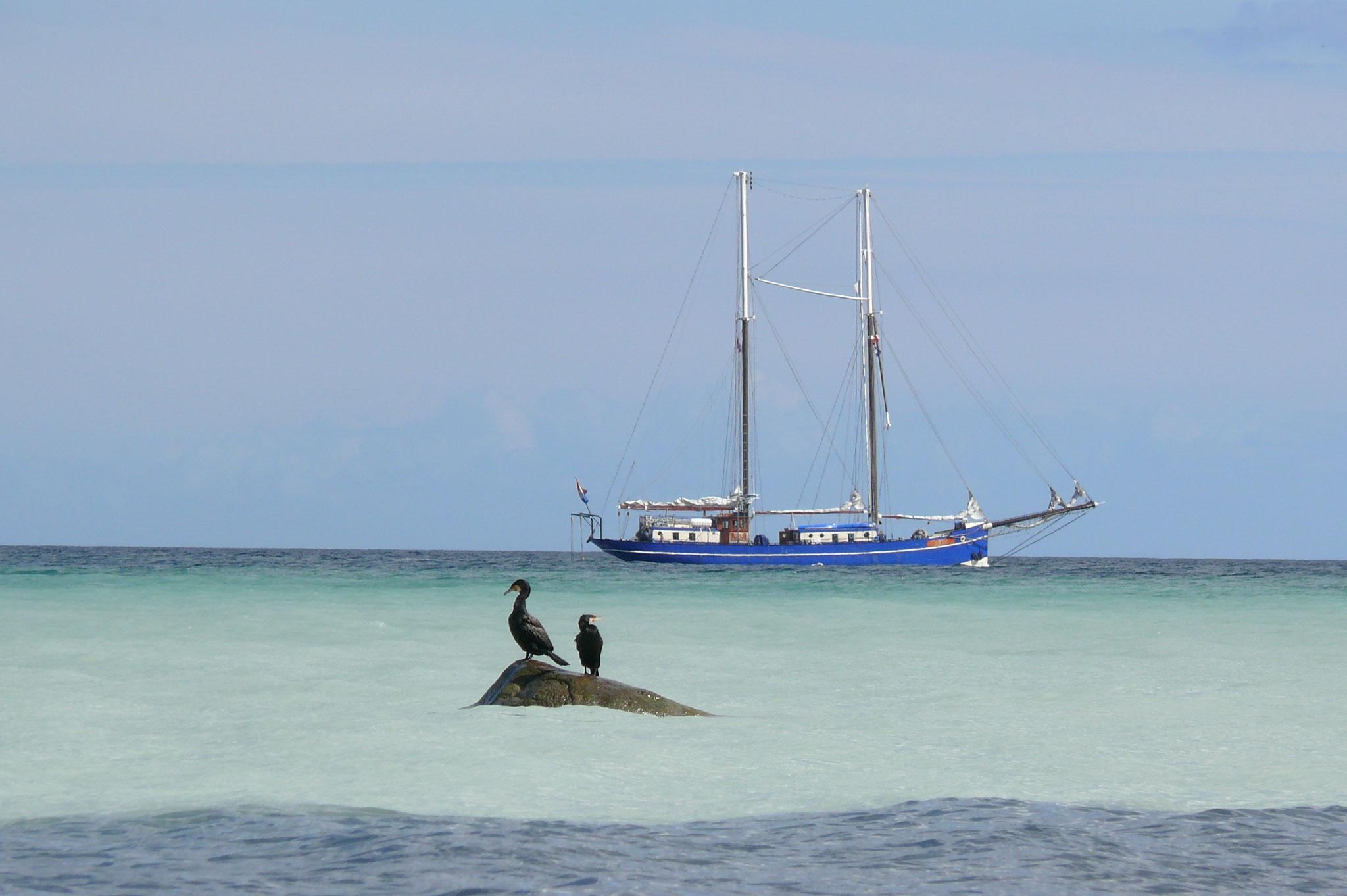 Segelschiff Oban