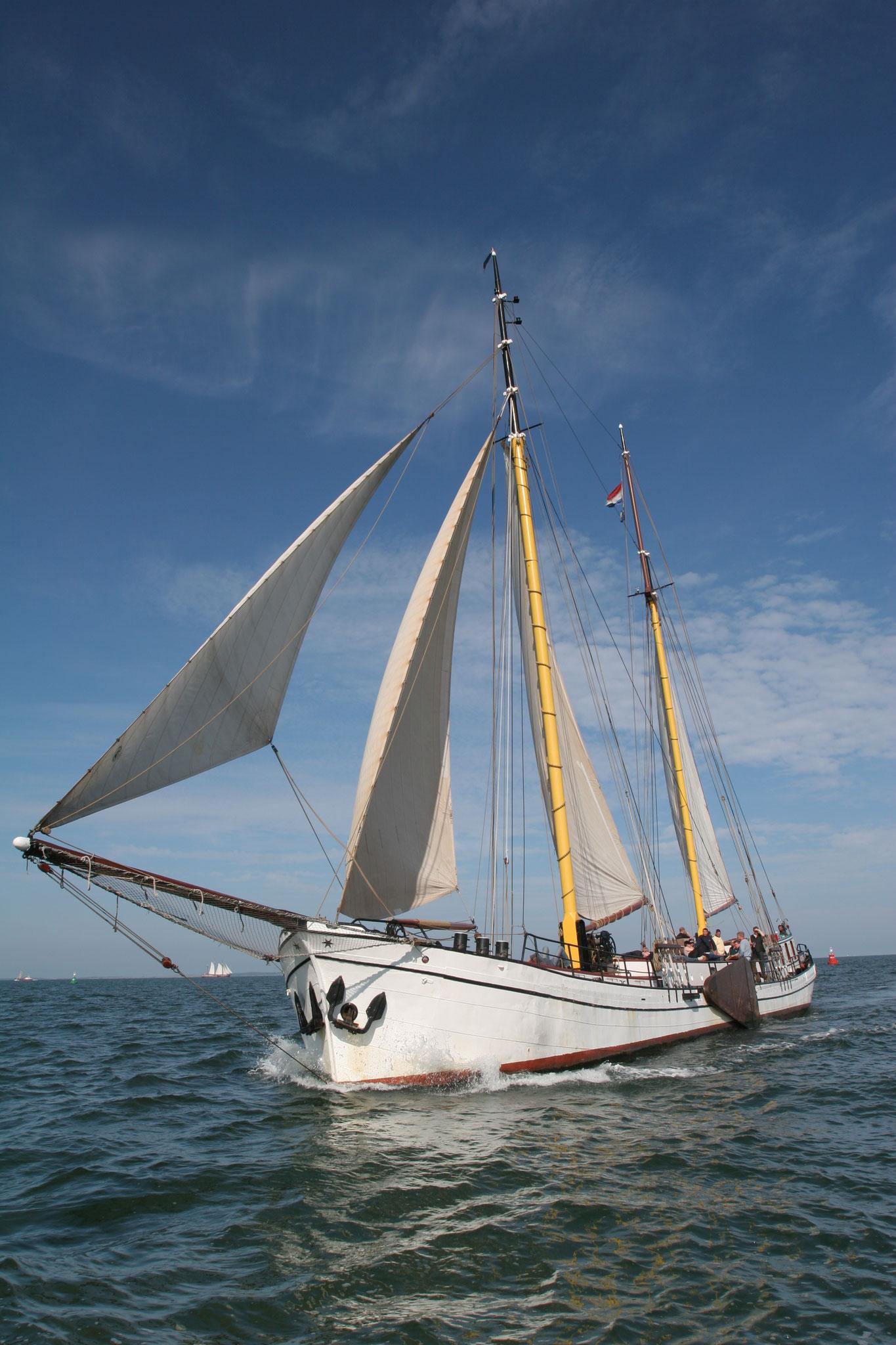 Segelschiff Actief unter Segeln