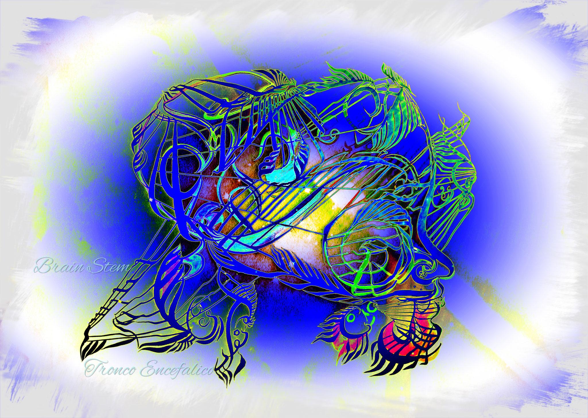 Tronc cerebrale
