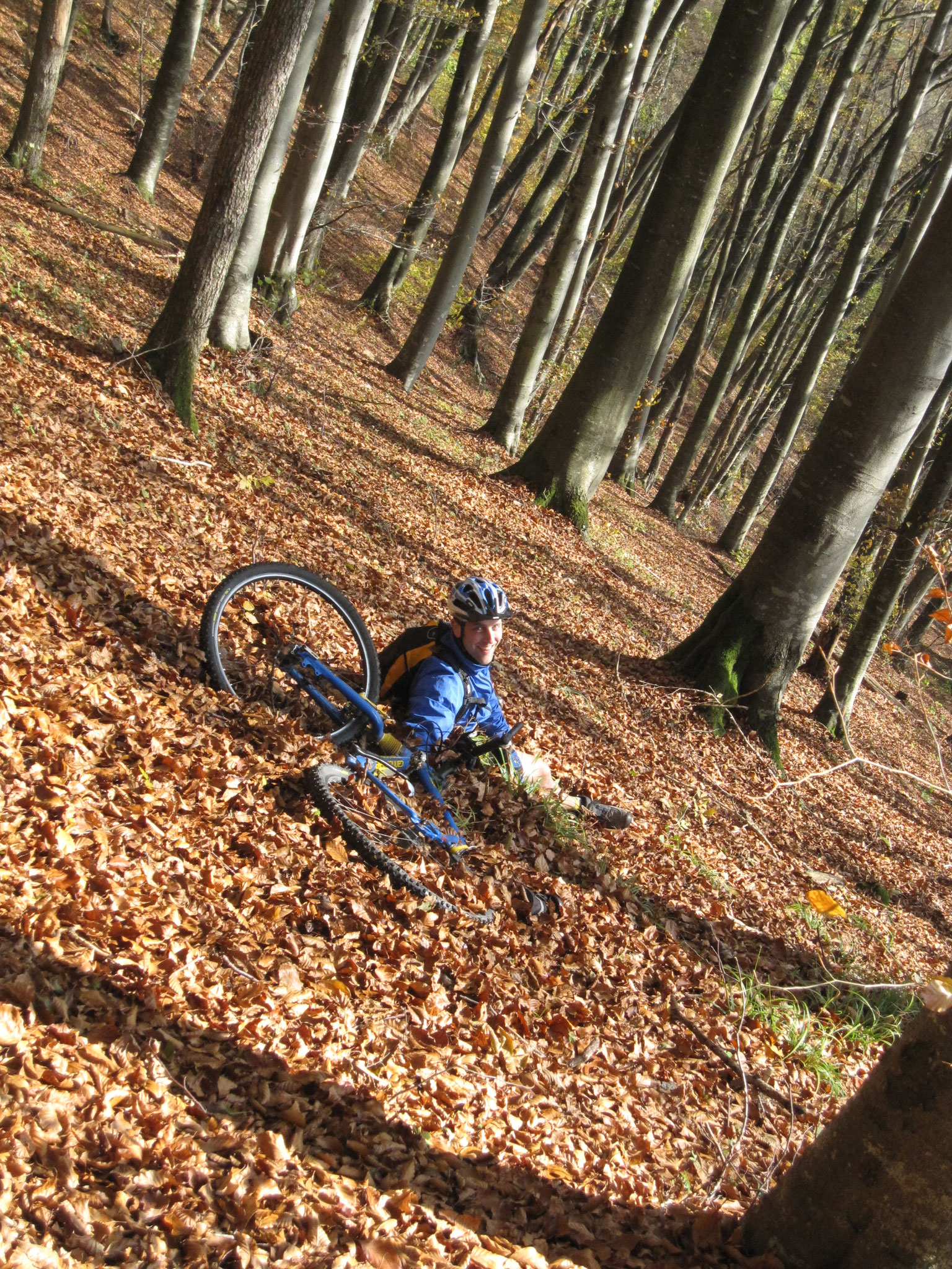 Lägern AG 26.10.2008