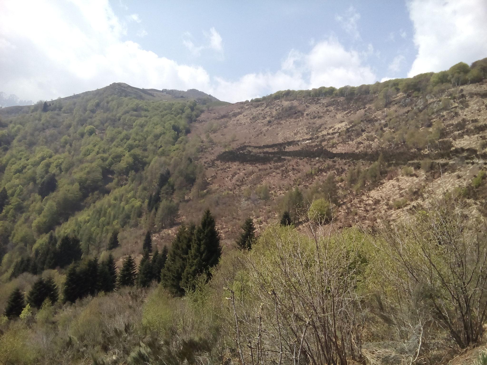 Alpe di Naccio / Corona di Pinz TI 25.4.2018