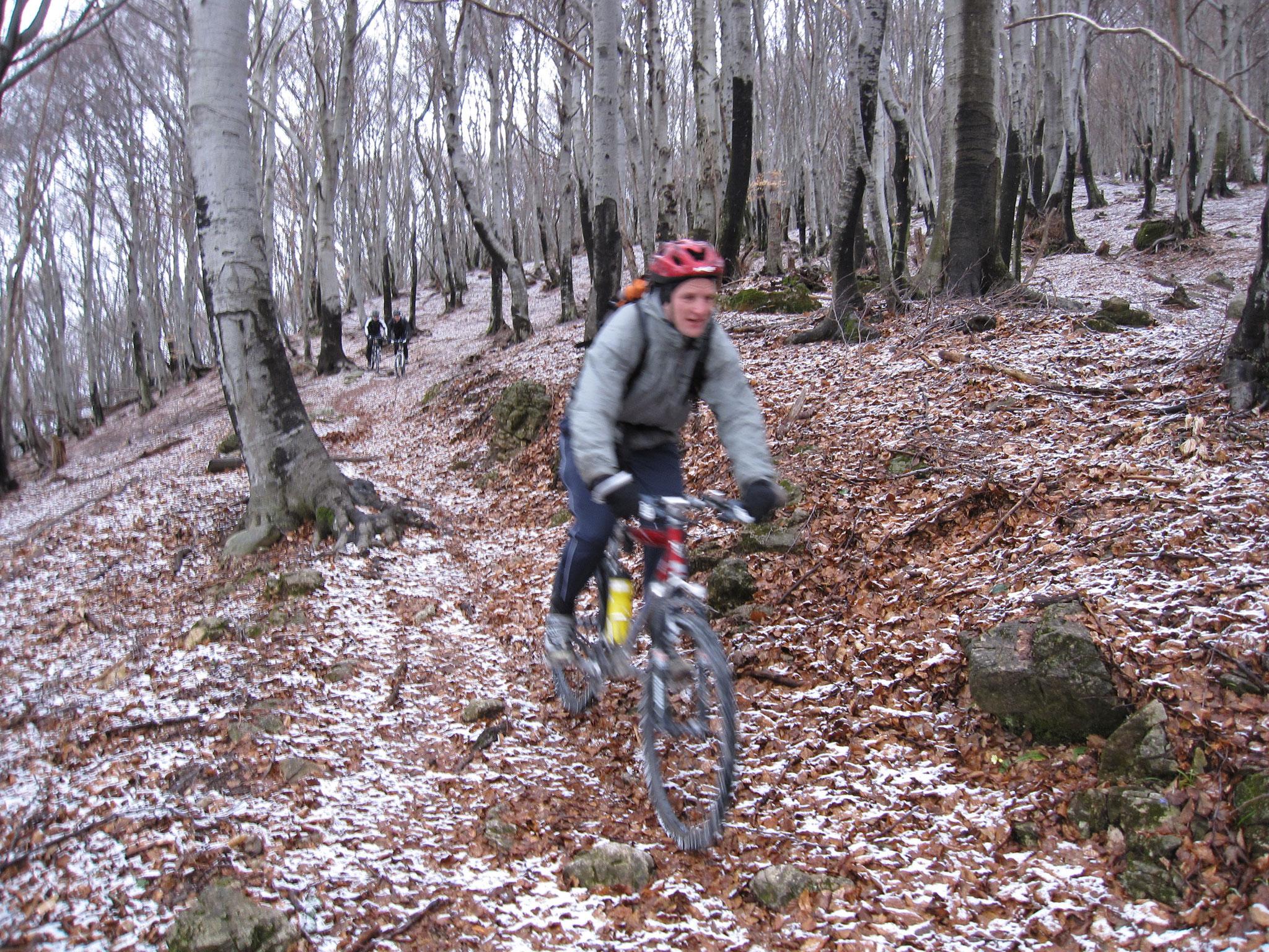 Alpe Bolla TI 1.4.2010
