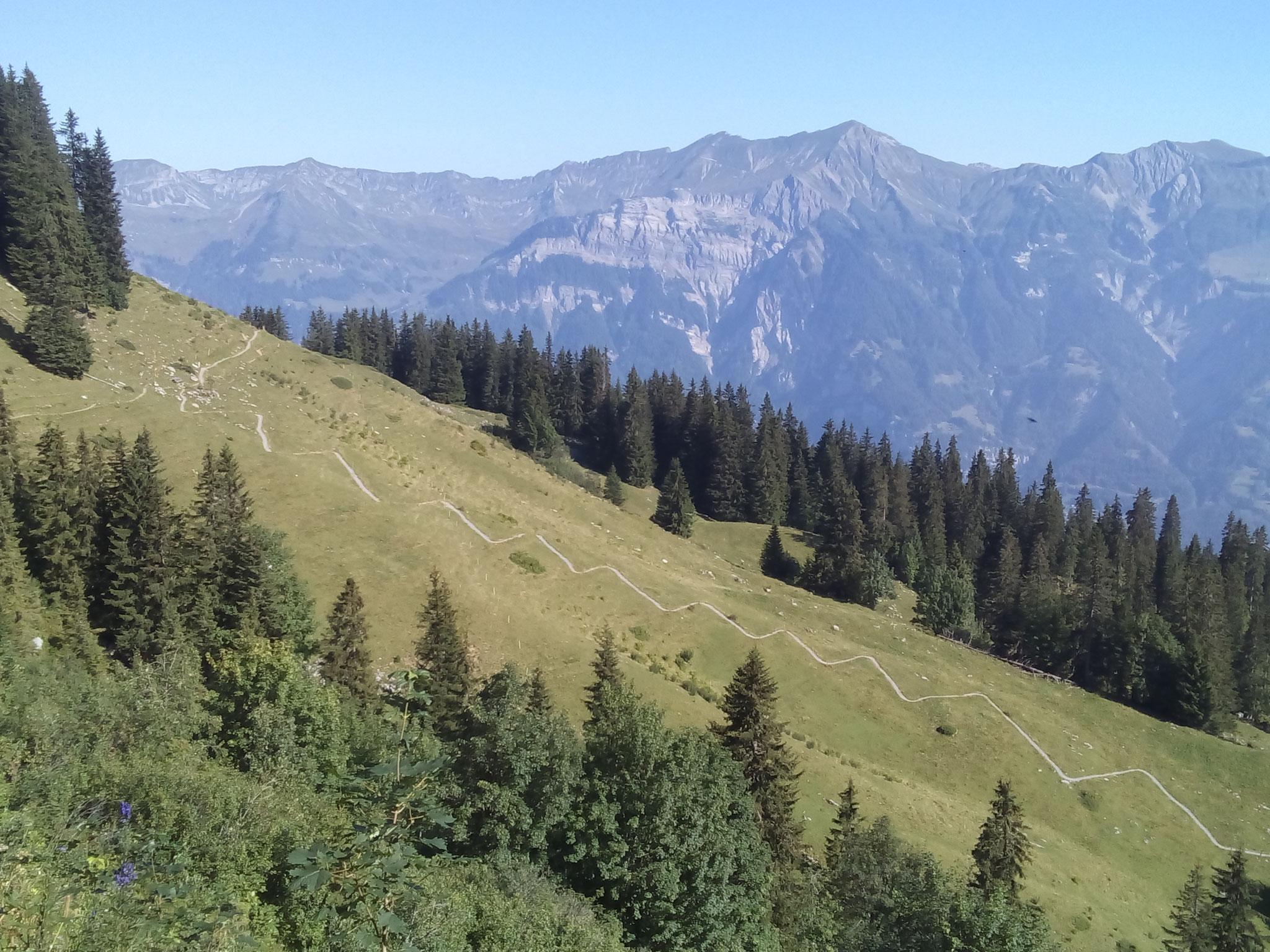 Axalp - Grosse Scheidegg BE 3.8.2018