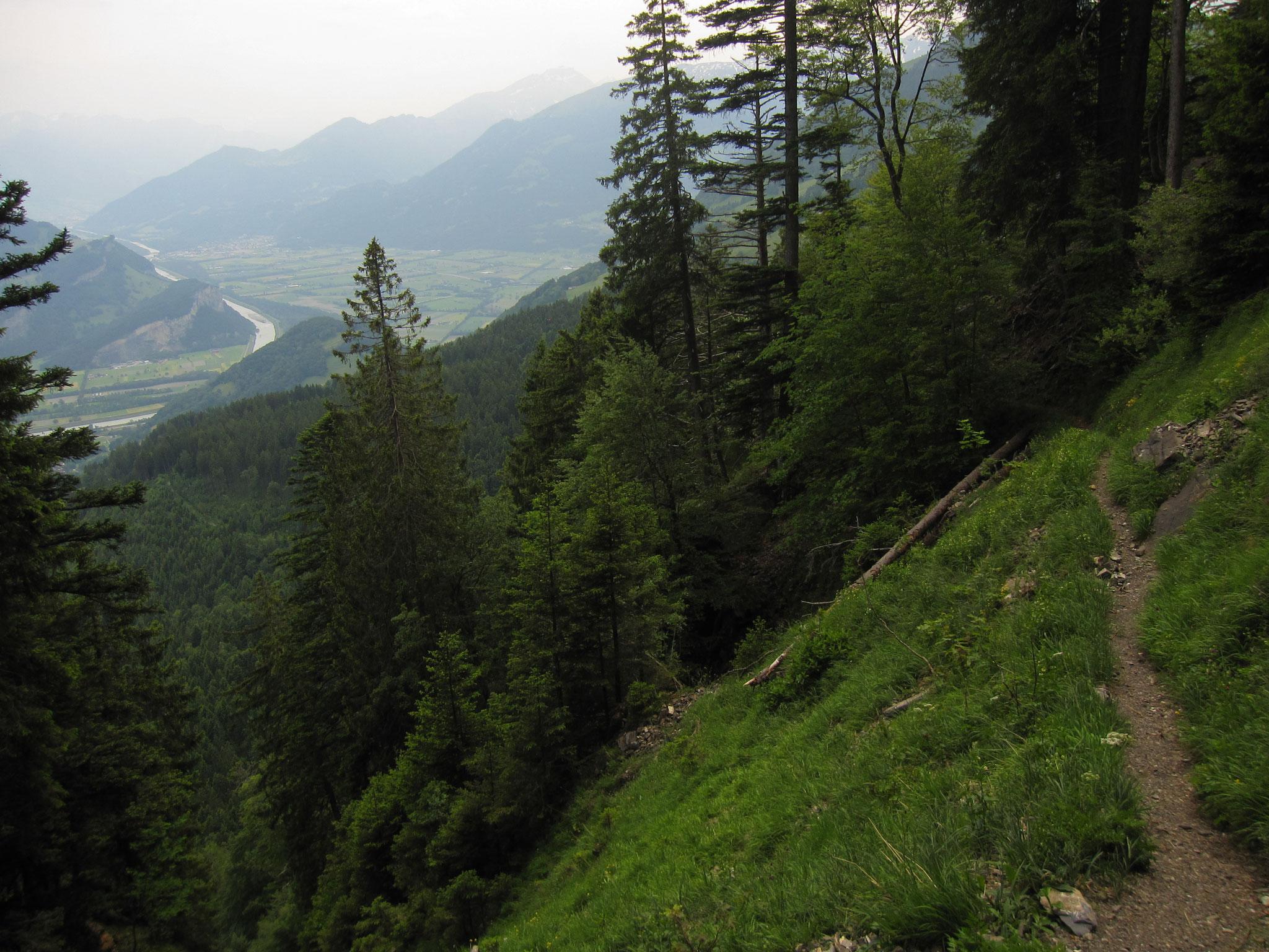 Sargans - Palfries - Heiligkreuz SG 12.6.2015