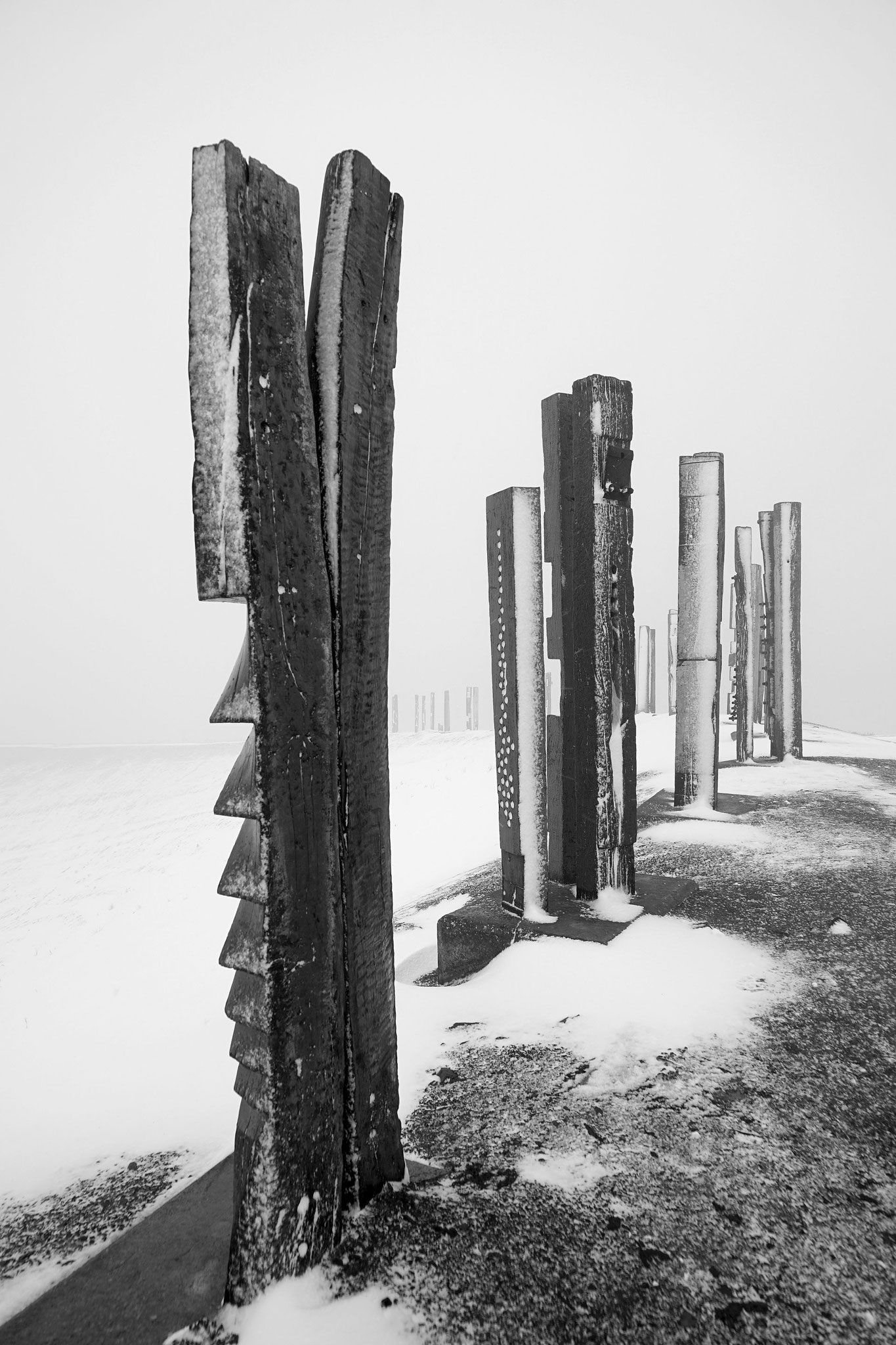 Ruhr Art - Halde Haniel 2