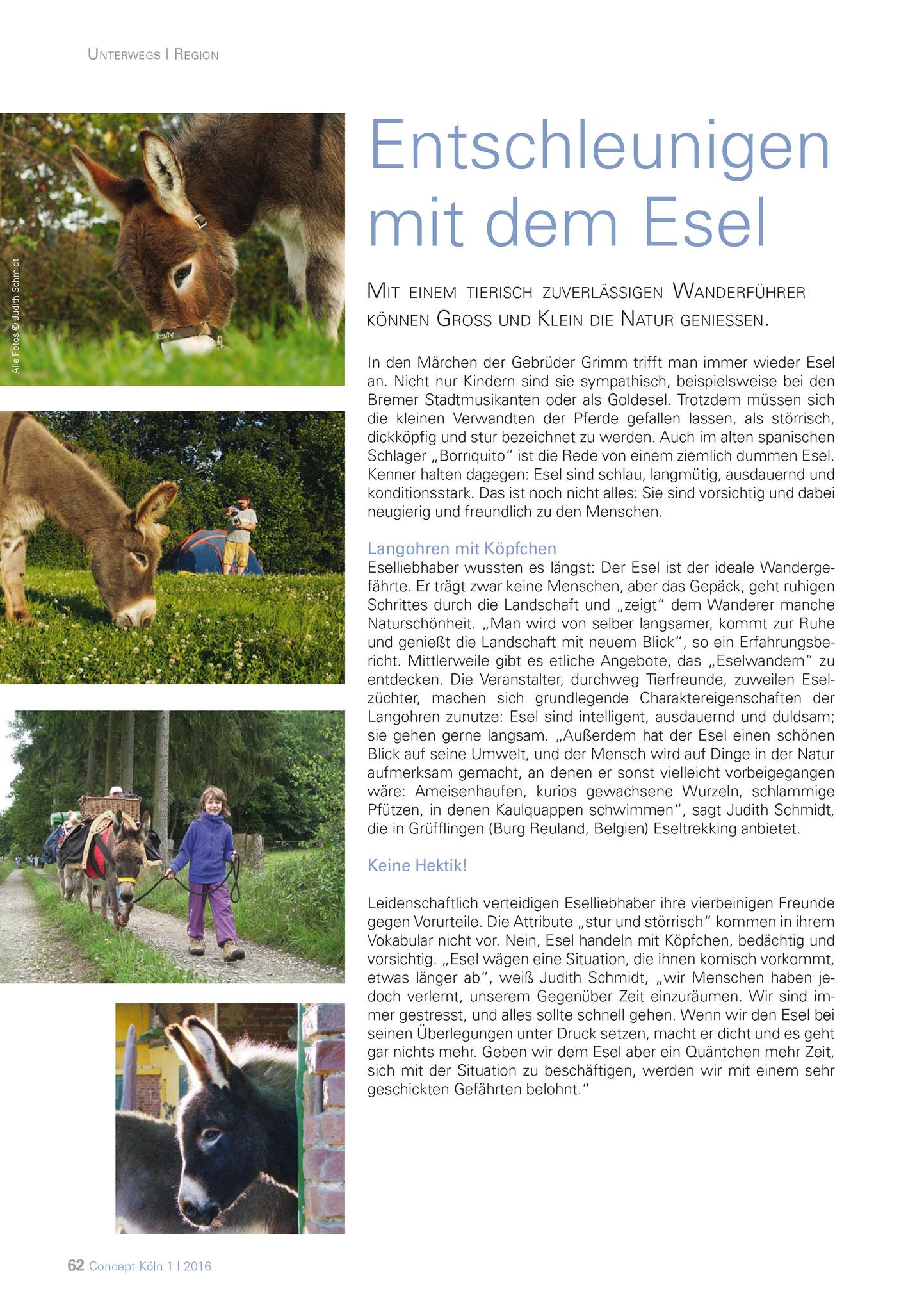 Concept-Magazin Mai 2016