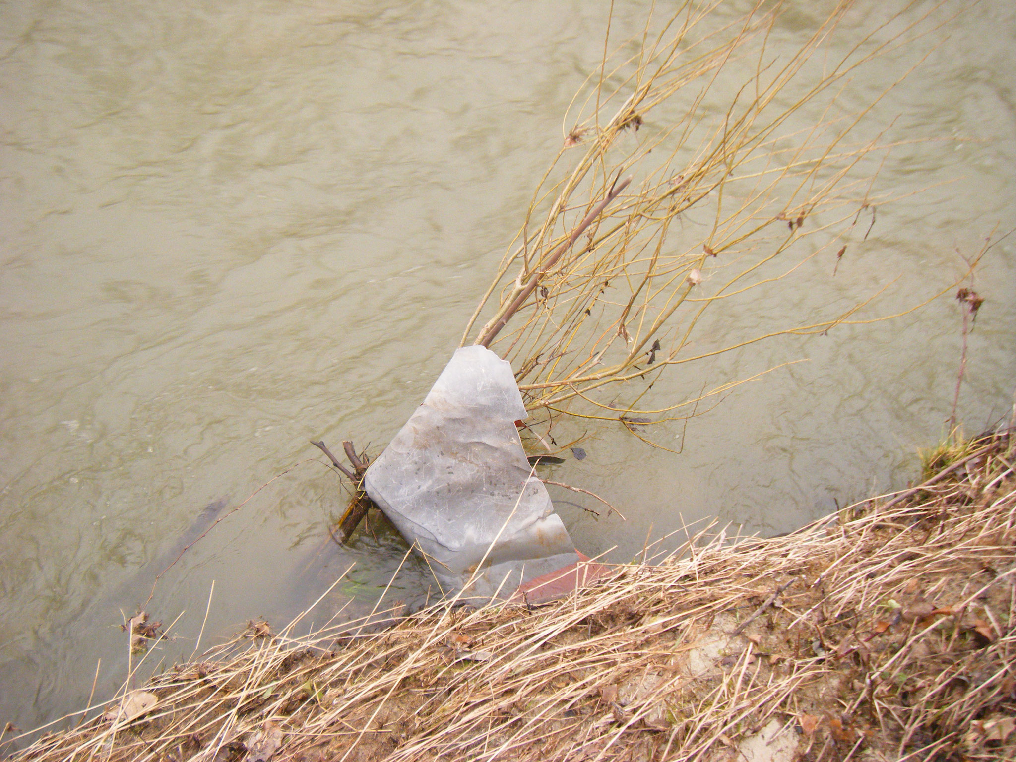 selbst an kleinsten Ästen hängt der Müll, hier eine dicke Verpackungsfolie