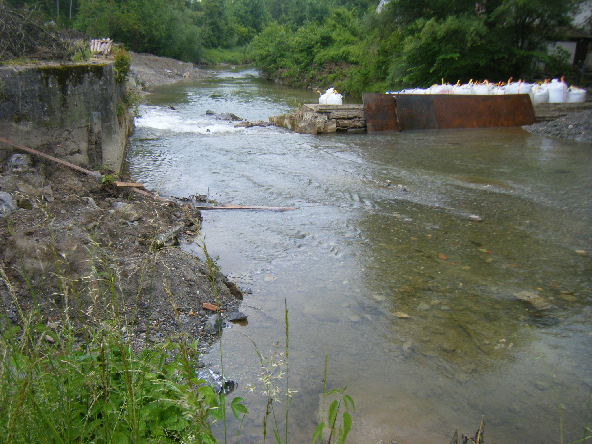 schon jetzt kann man ahnen, wie der Flussverlauf aussehen wird