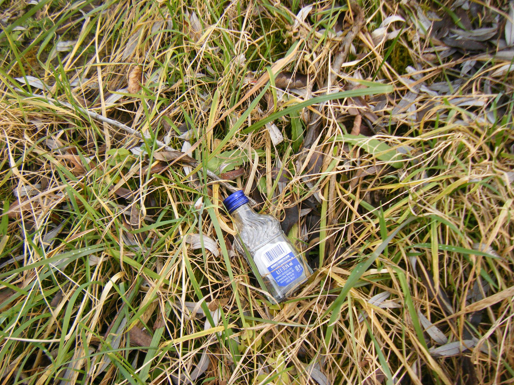 ein sehr häufiges Fundstück: Chantré- oder Wodka-Flachmann