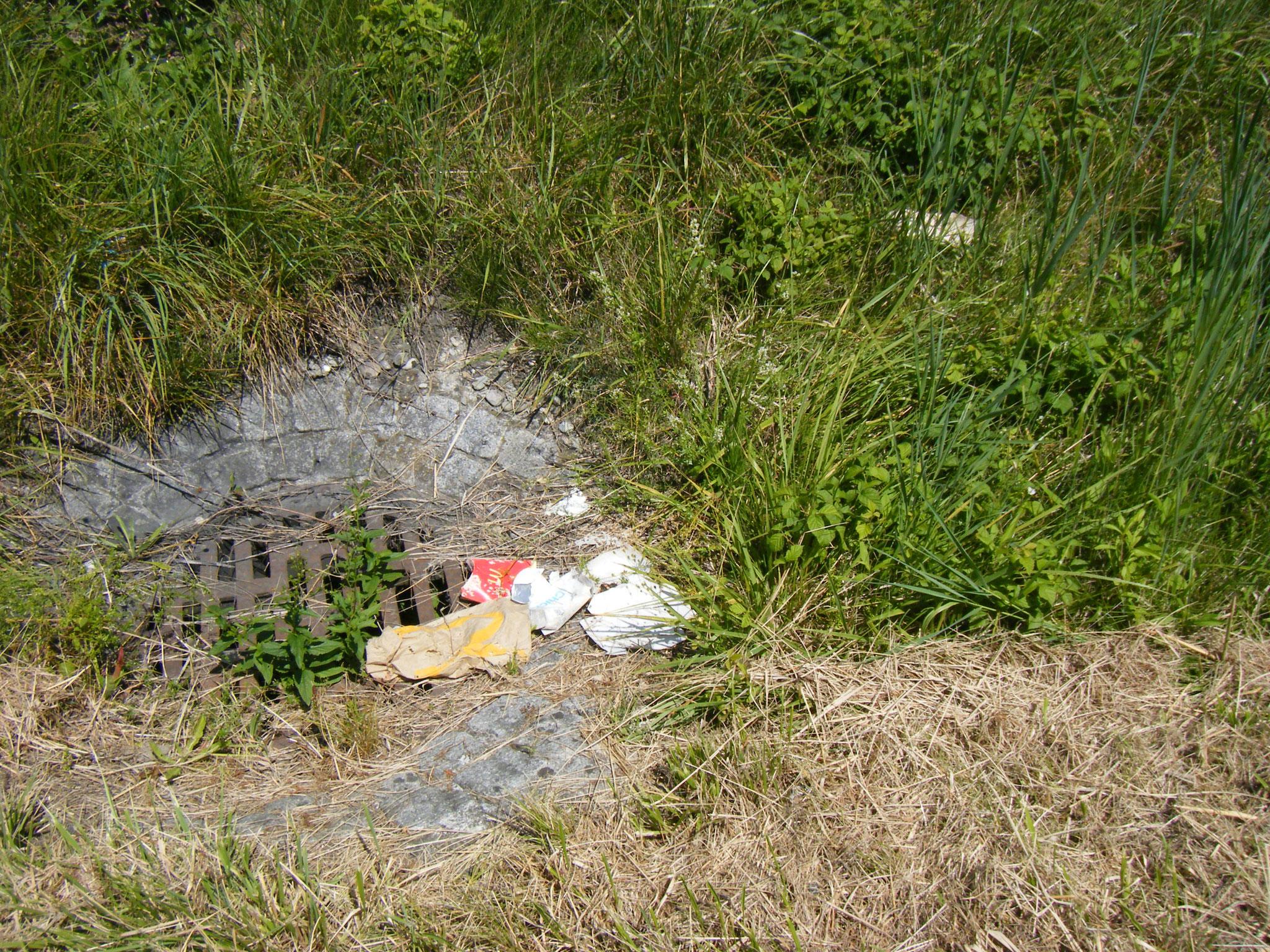 geschredderter Müll wohin man schaut