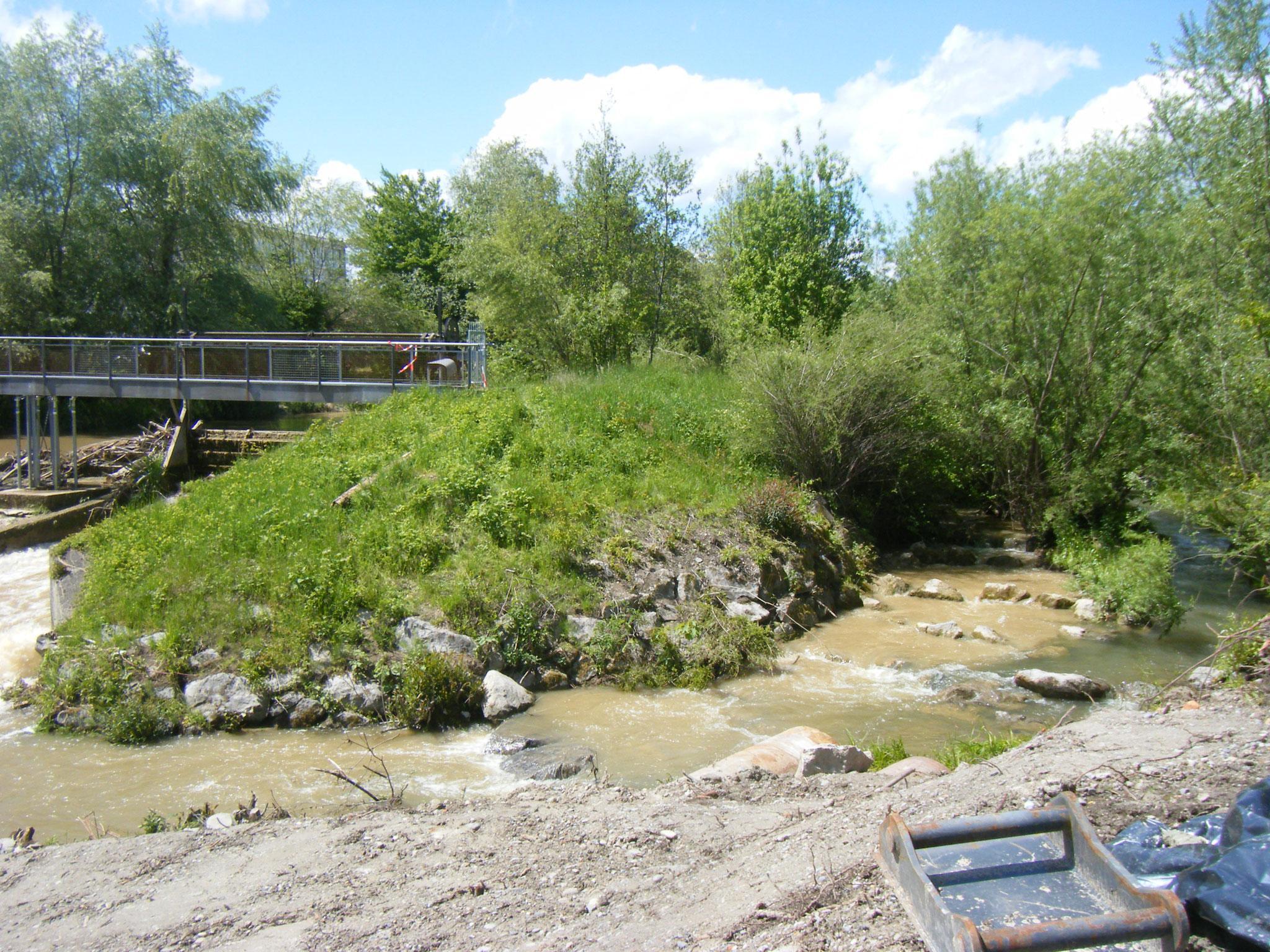 Blick auf die Fischtreppe und daneben die Einmündung des Allmannsweiler Baches, rechts unten der Einlauf des Stahlrohres