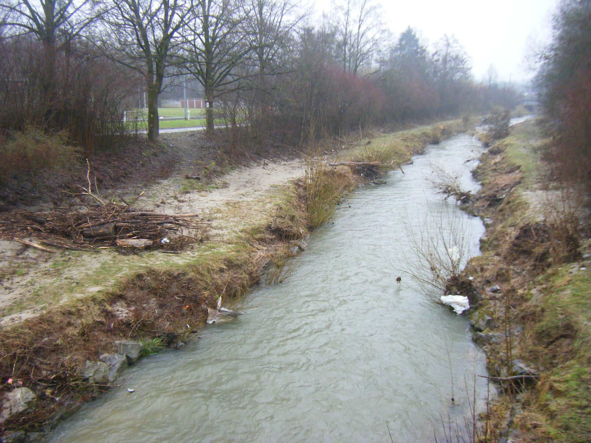 Blick von der Columbanbrücke nach Süden, Mülfetzen in allen Gebüschen und im Sand am Ufer und im Schwemmholz