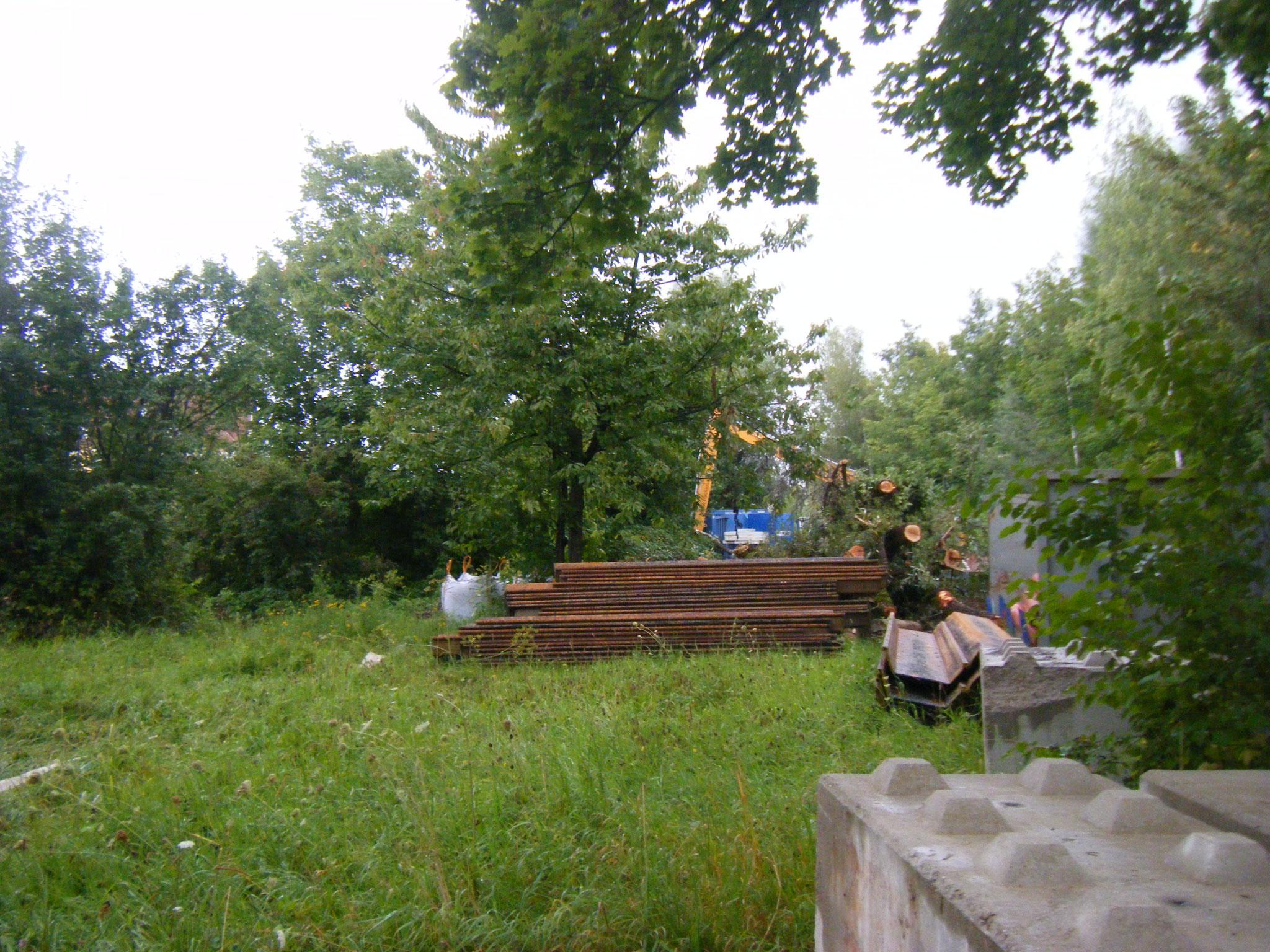 die vordere Wiese wird leider als Lagerplatz für  immer mehr Baumaterialien verwendet