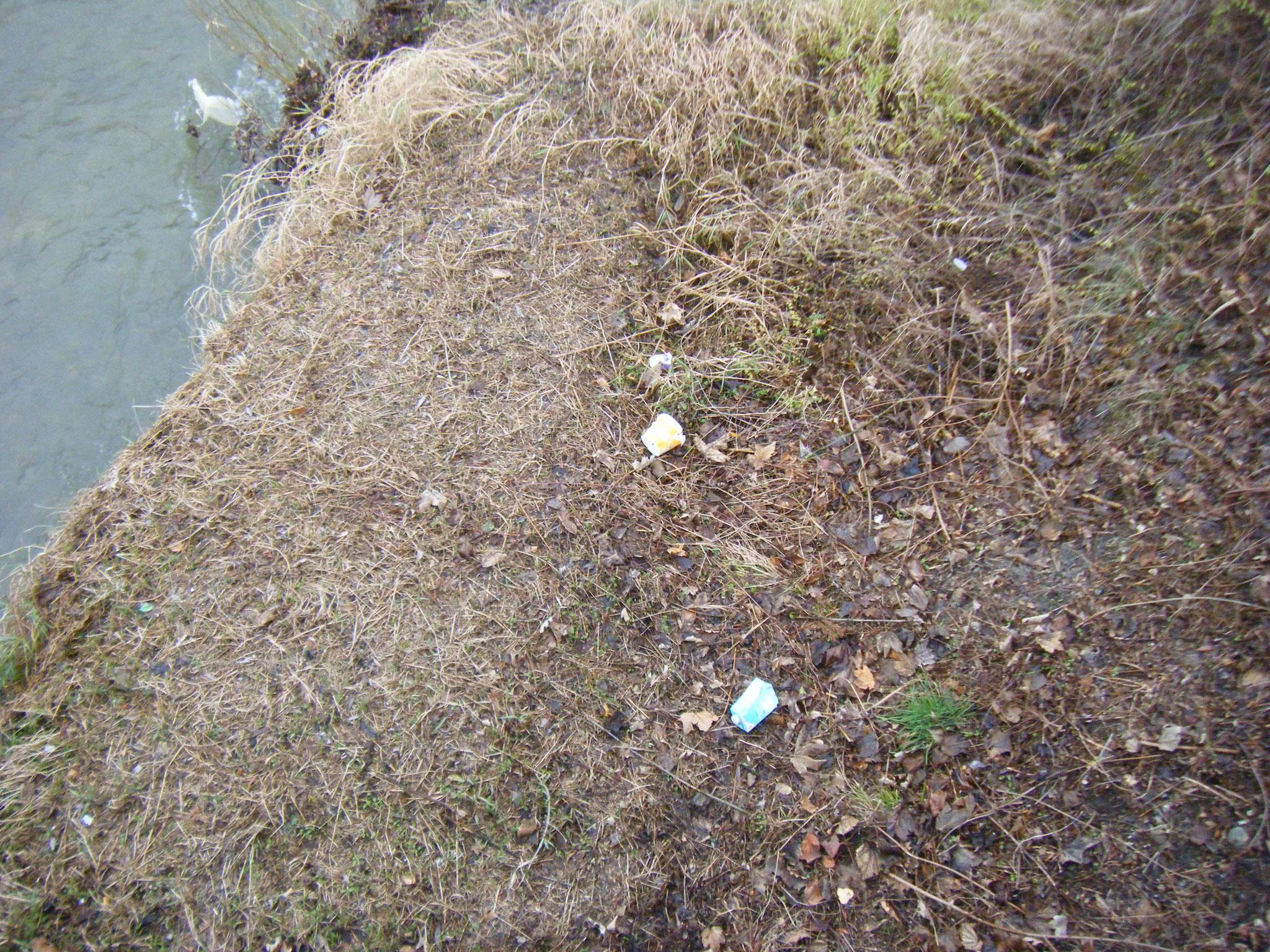 Blick von der Brücke Flugplatzstraße auf die Rotachböschung: mindestens 20 Plastik-Verpackungen