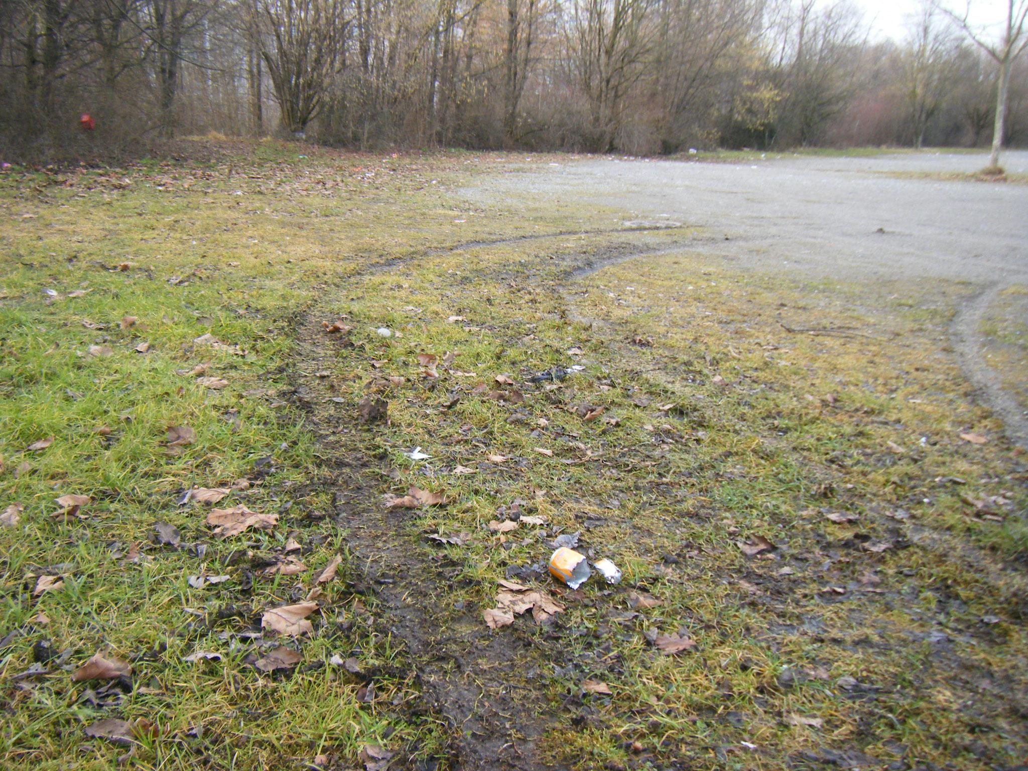 auf der Fläche Hunderte von Müll-Teilen, oft auch schon von Freischneidern geschreddert