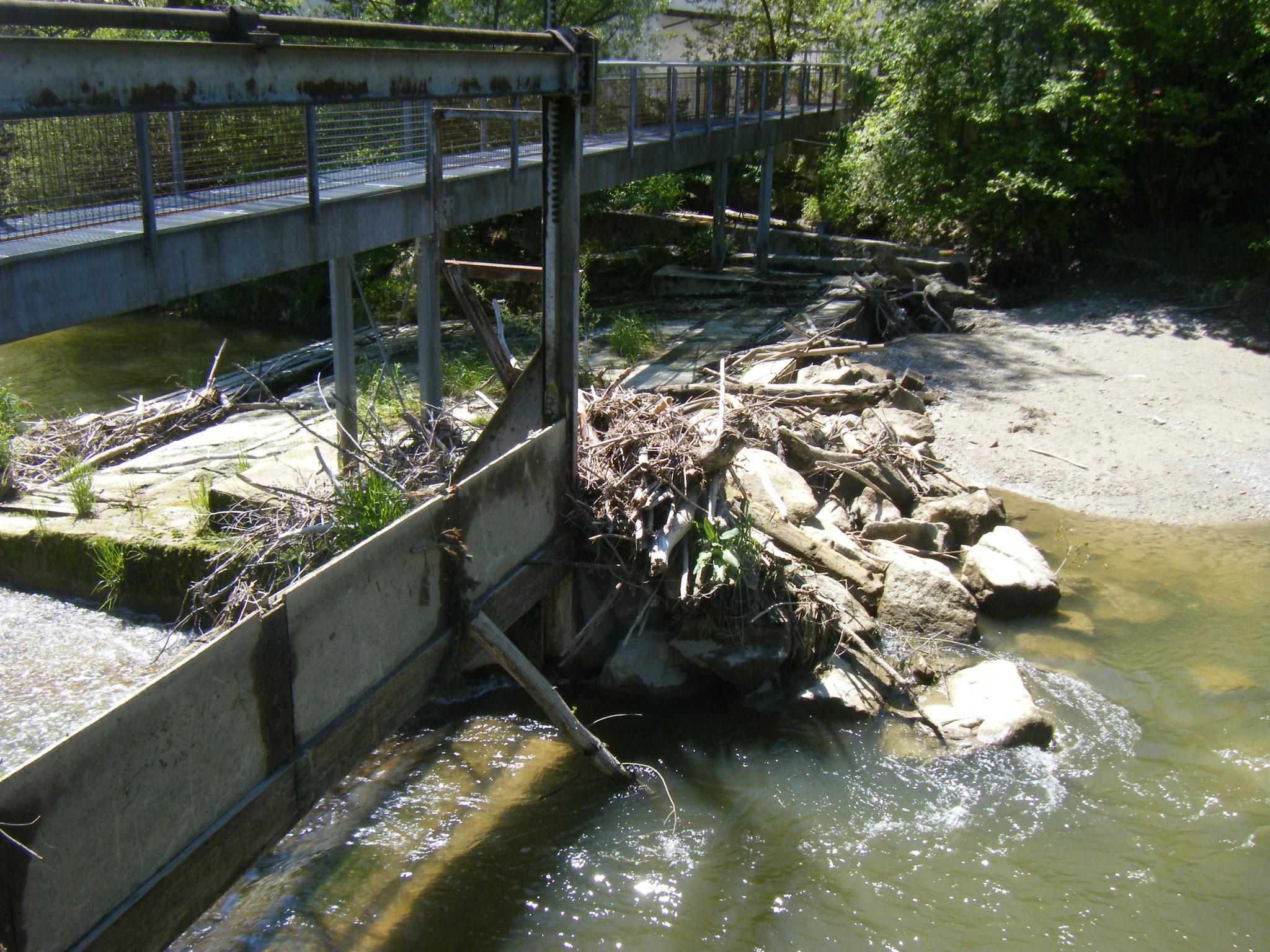 ist die Barriere geschlossen hält das Wehr auch viel Treibholz und Geröll auf.