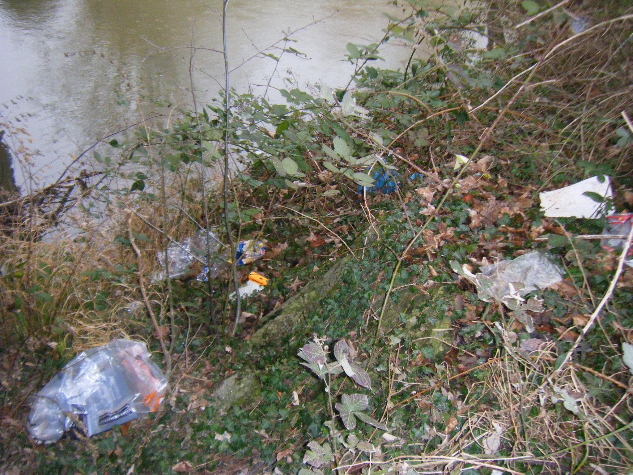 An der Rotach-Uferböschung alles voller Müll