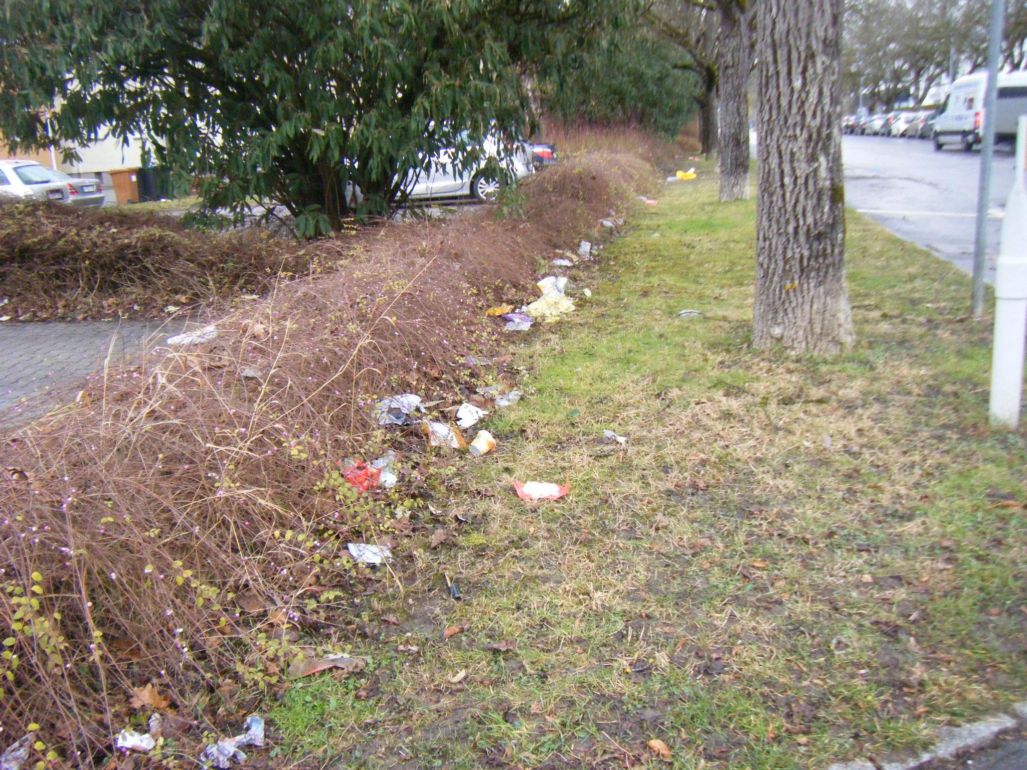 flächendeckende Vermüllung aller Gebüsche im Müllbezirk B