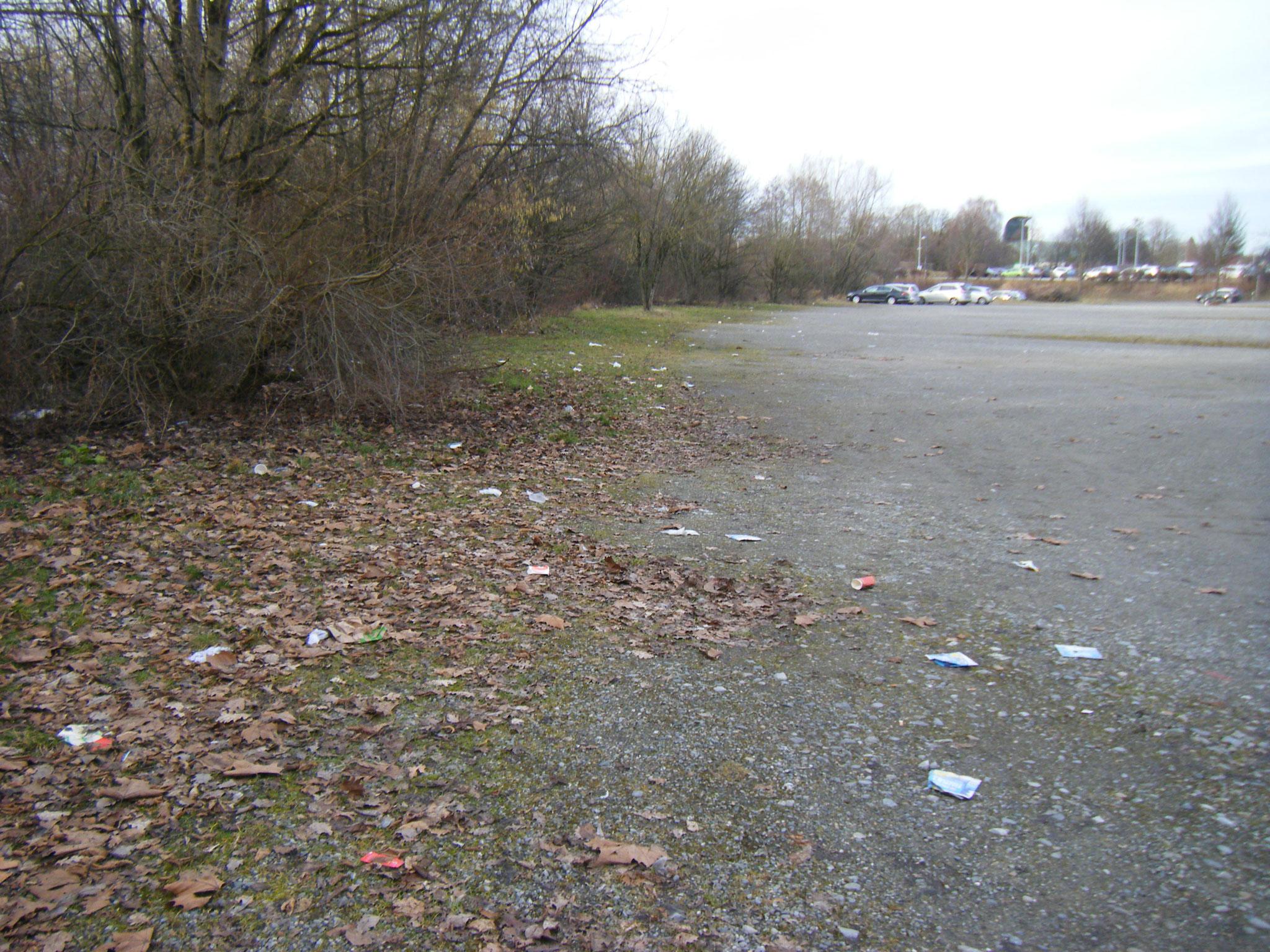 Der Ostwind weht allen Müll vom Parkplatz ins Gebüsch, wo er nun wirklich nicht hin gehört
