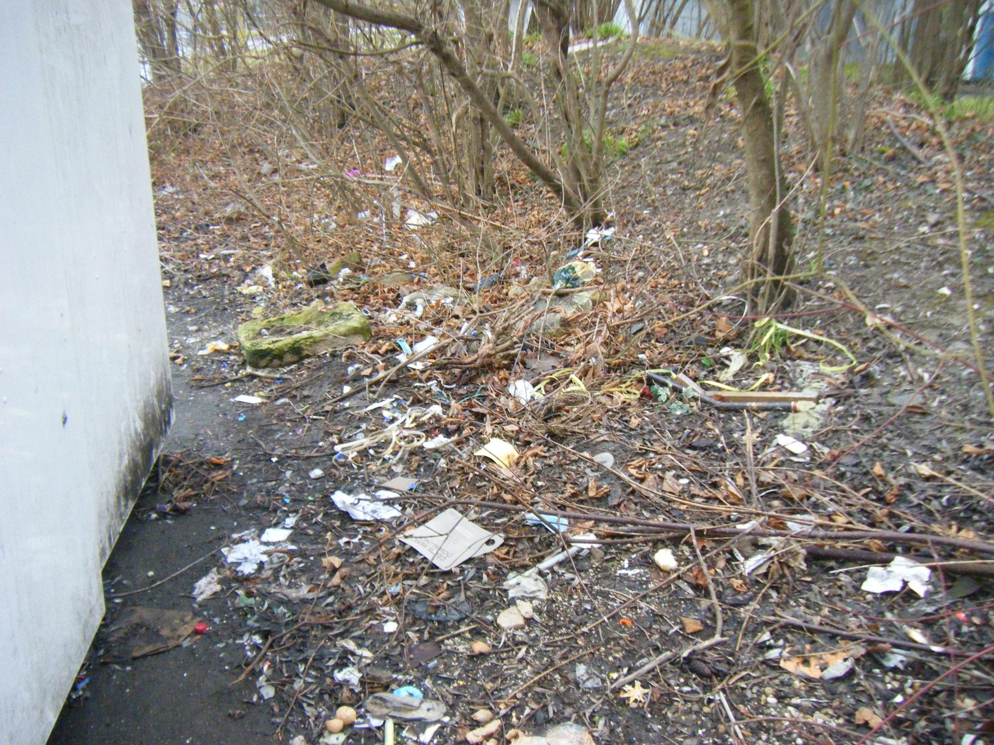 mehr Müll als Laub