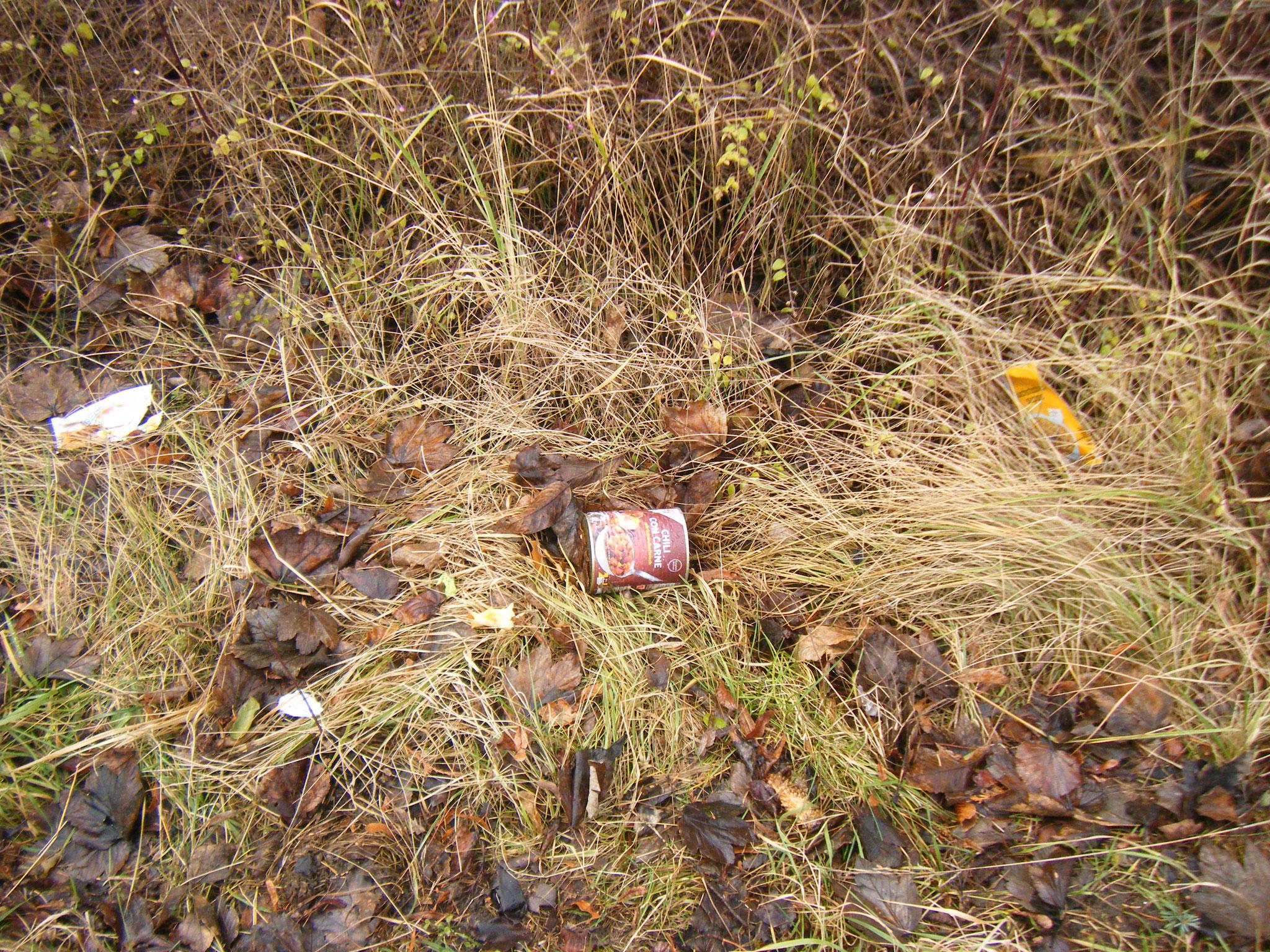 Lebensmittelverpackungen auf einer Grünfläche, wer machts weg?
