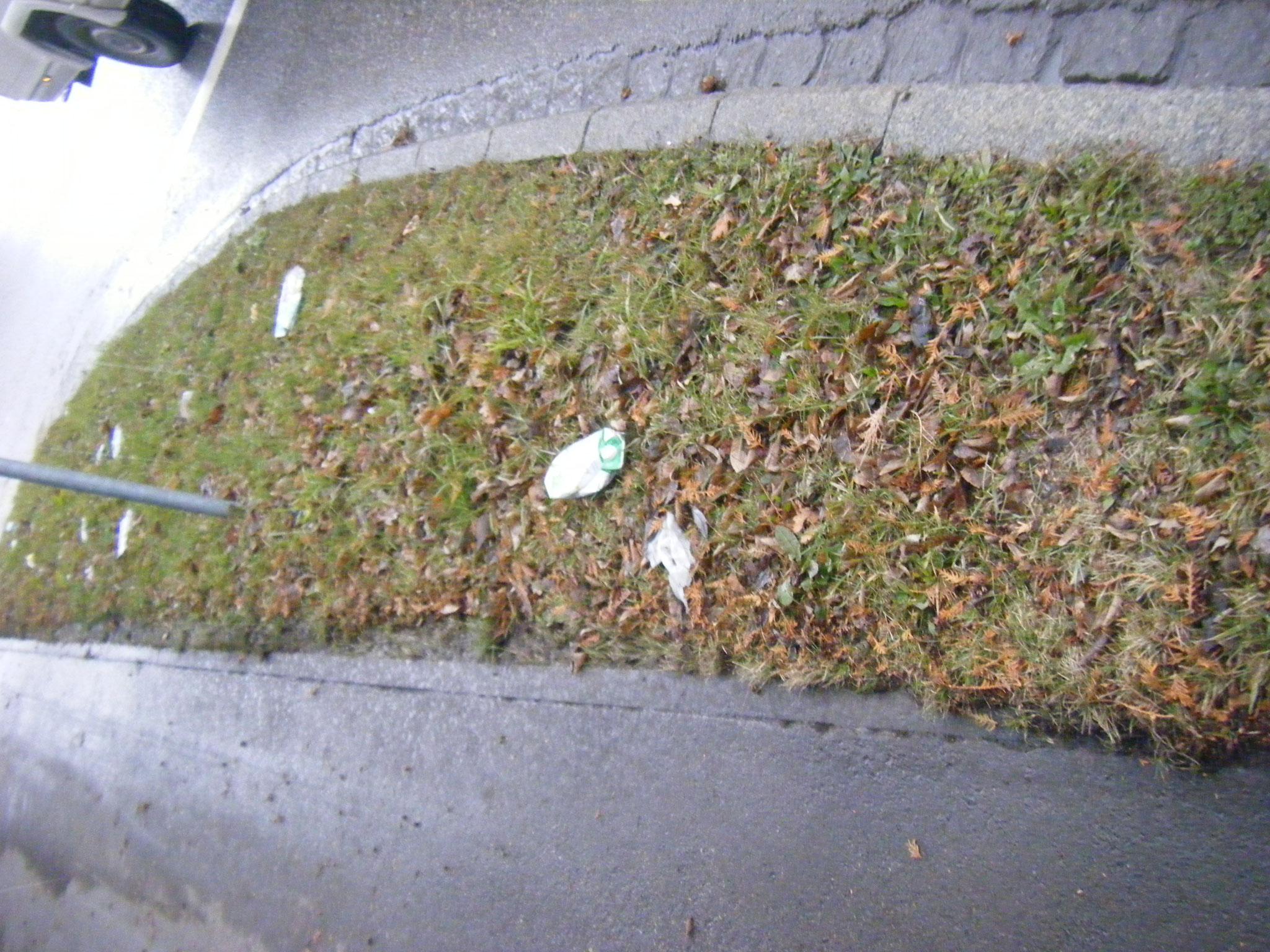 auf diesem Grünstreifen am Kreisverkehr beim Competenz-Center fanden sich auf 3 qm 32 Müllteile