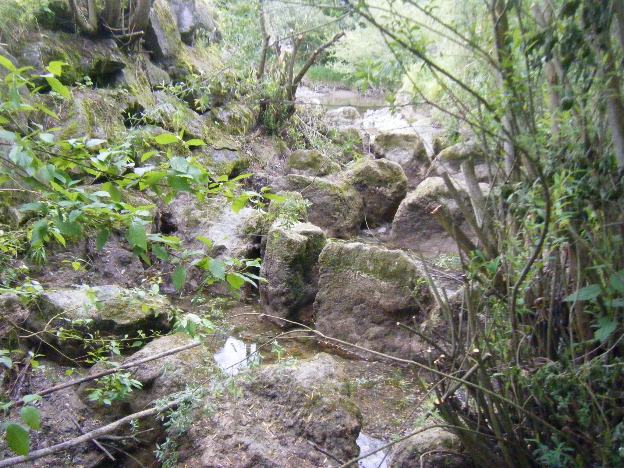 die trocken gefallene ehemalige Fischtreppe