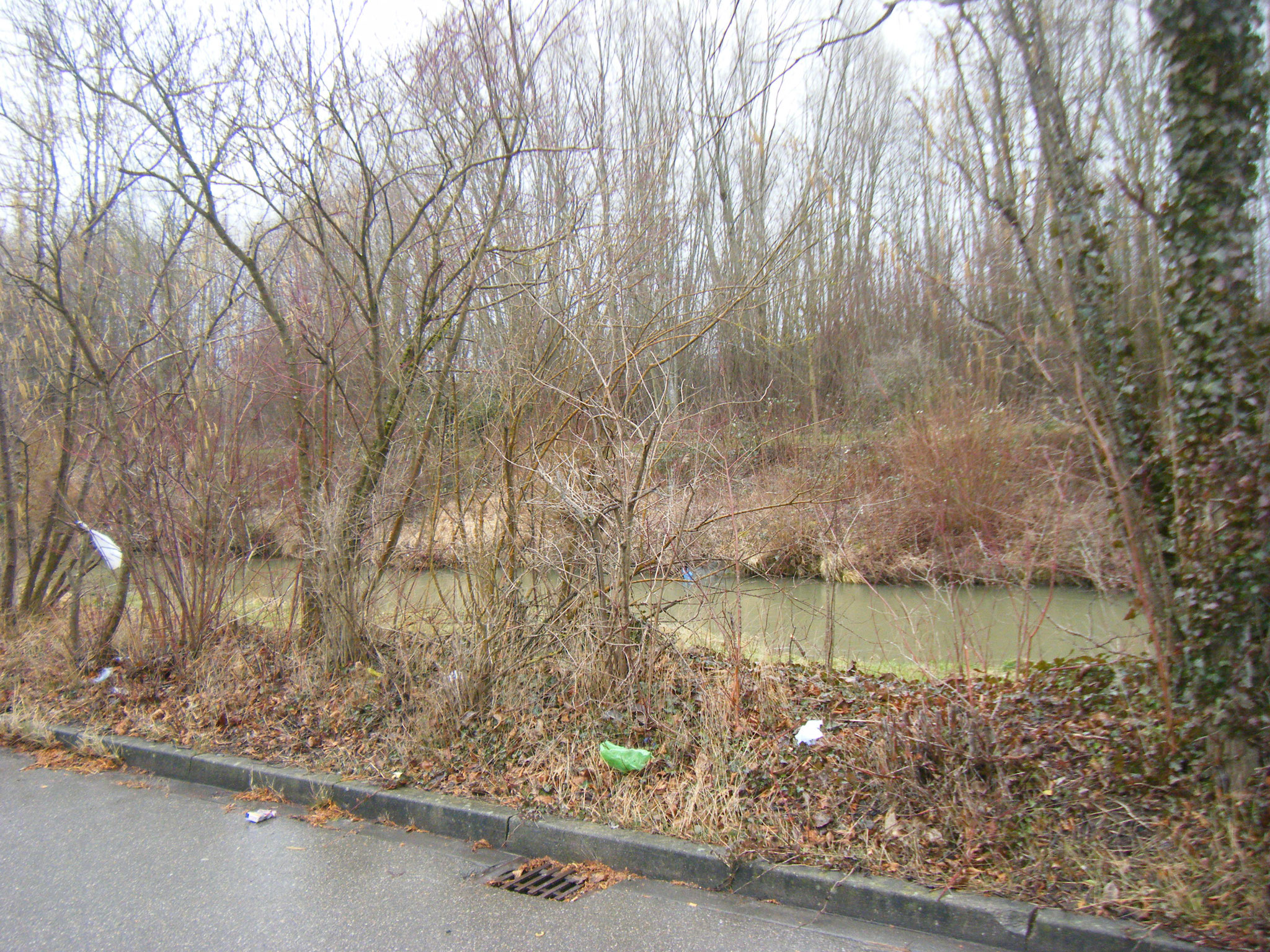 Der Wind treibt die Müllteile in die Büsche, ins Wasser und sogar ans gegenüberliegende Ufer