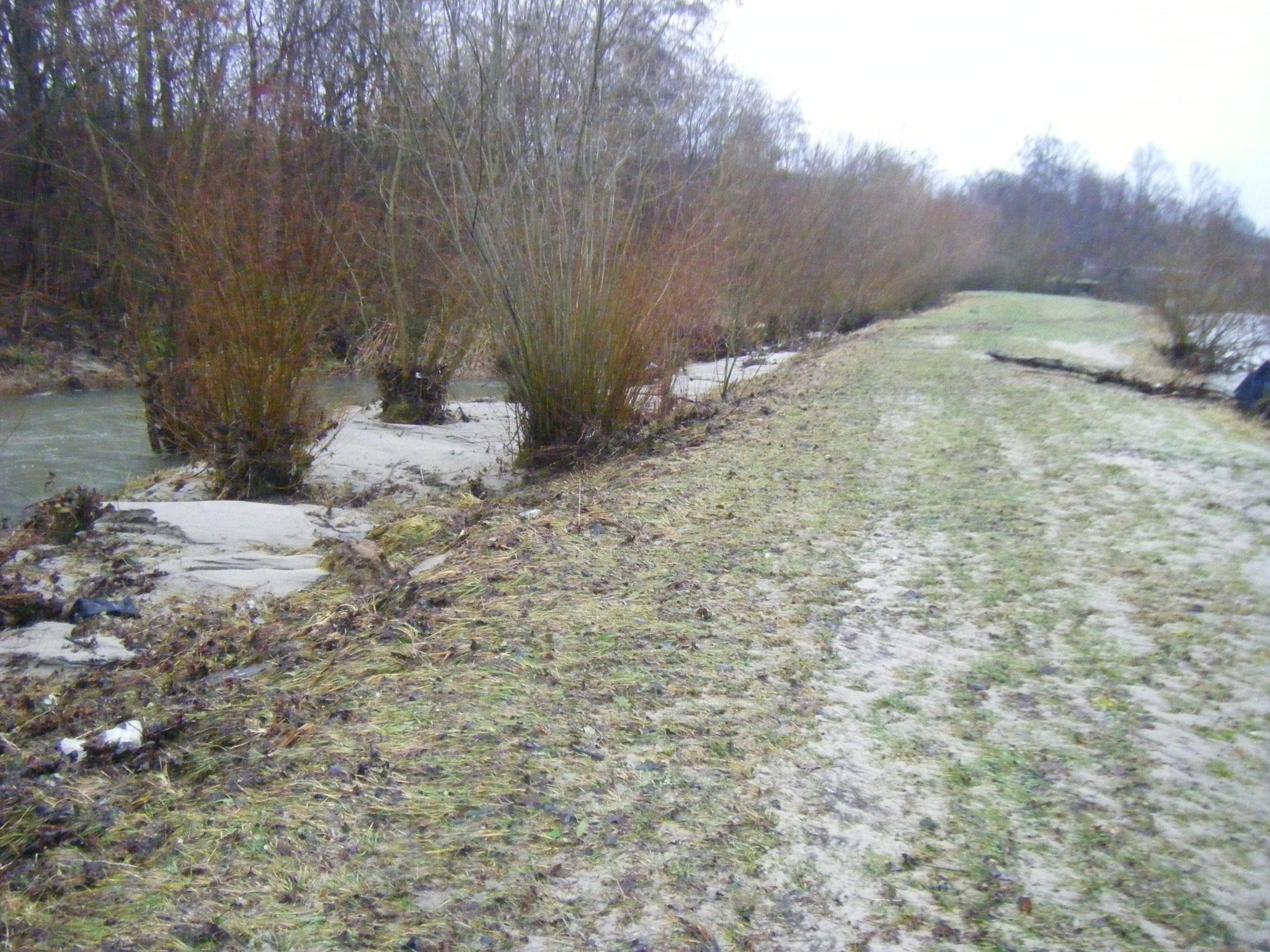 ab einer Durchflussmenge von ca. 55 cbm/sec wird die Halbinsel zwischen Rotach und Allmannsweiler Bach überspült (zu erkennen an nach links ausgericheter Vegetation) und im deutlich tiefer liegenden Allmansweiler Bach bildet sich ein Ausgleichs-Rückstau.