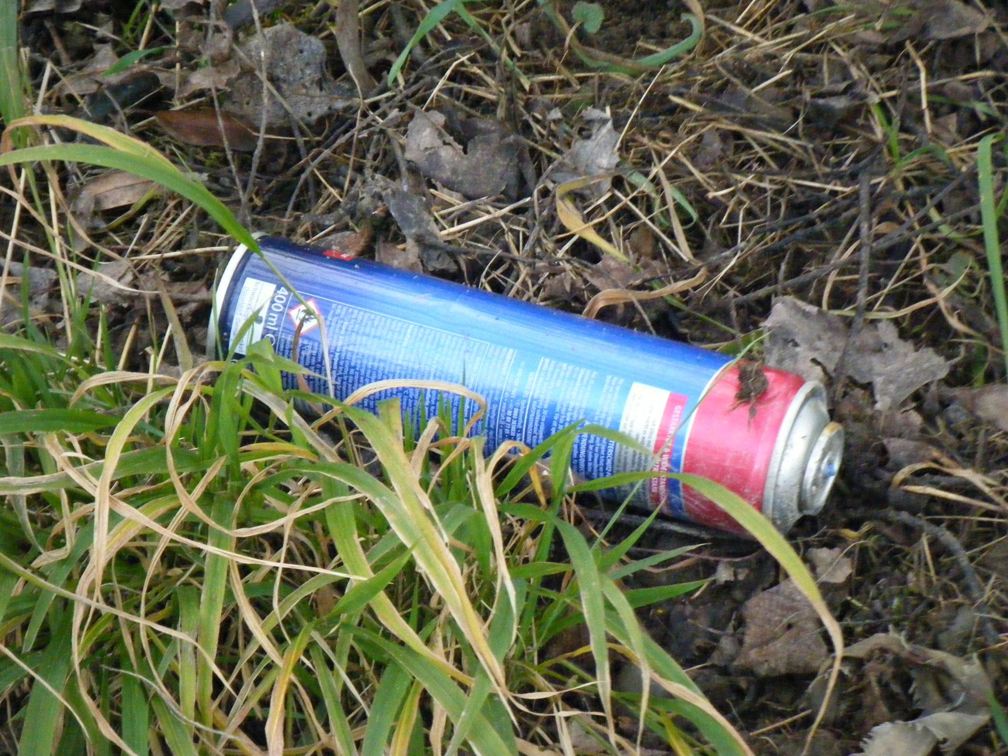 Spraydosen, achtlos aus dem Auto geworfen
