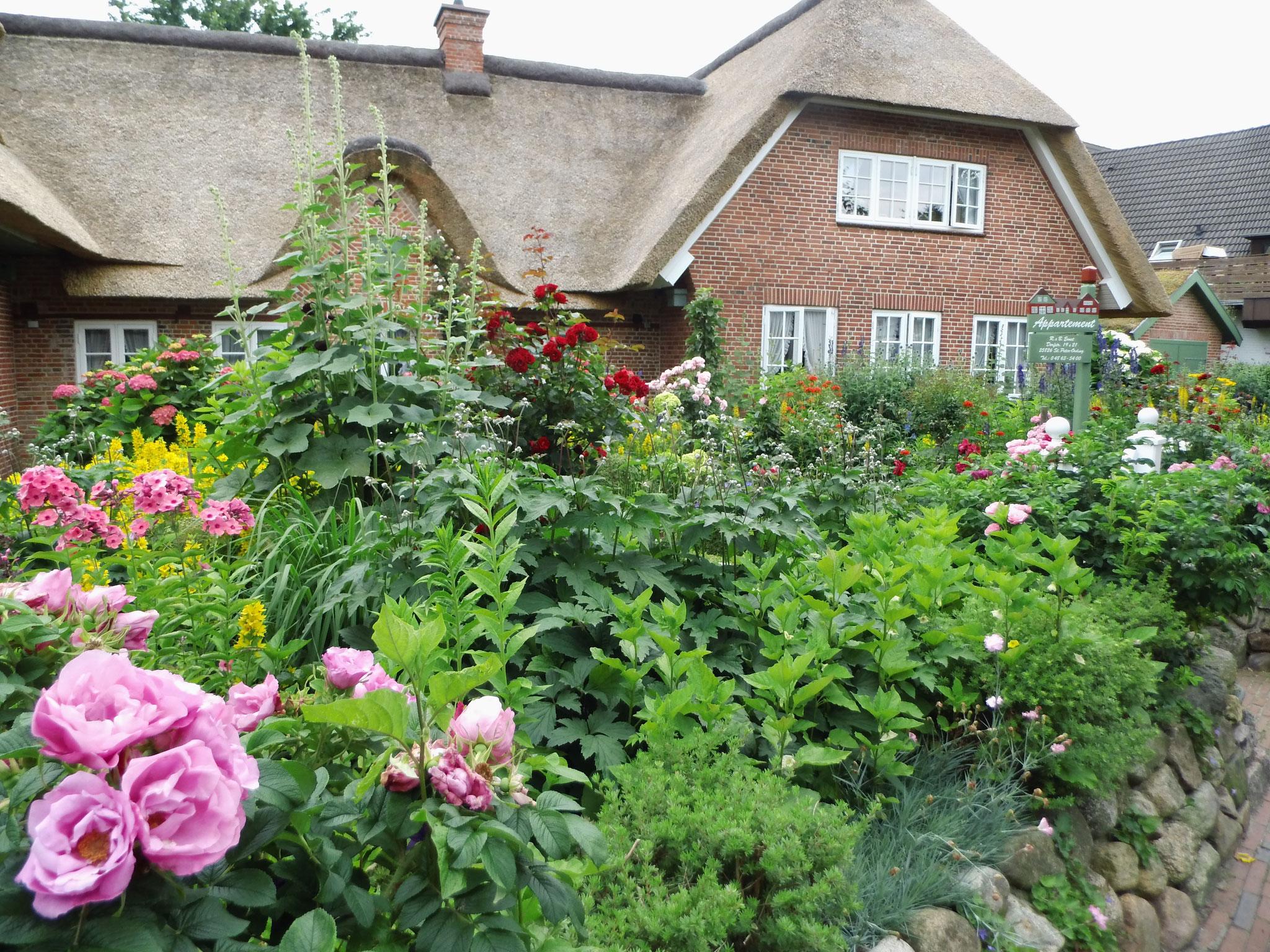 Das vielleicht schönste Reetdachhaus mit dem vielleicht schönsten Garten in SPO
