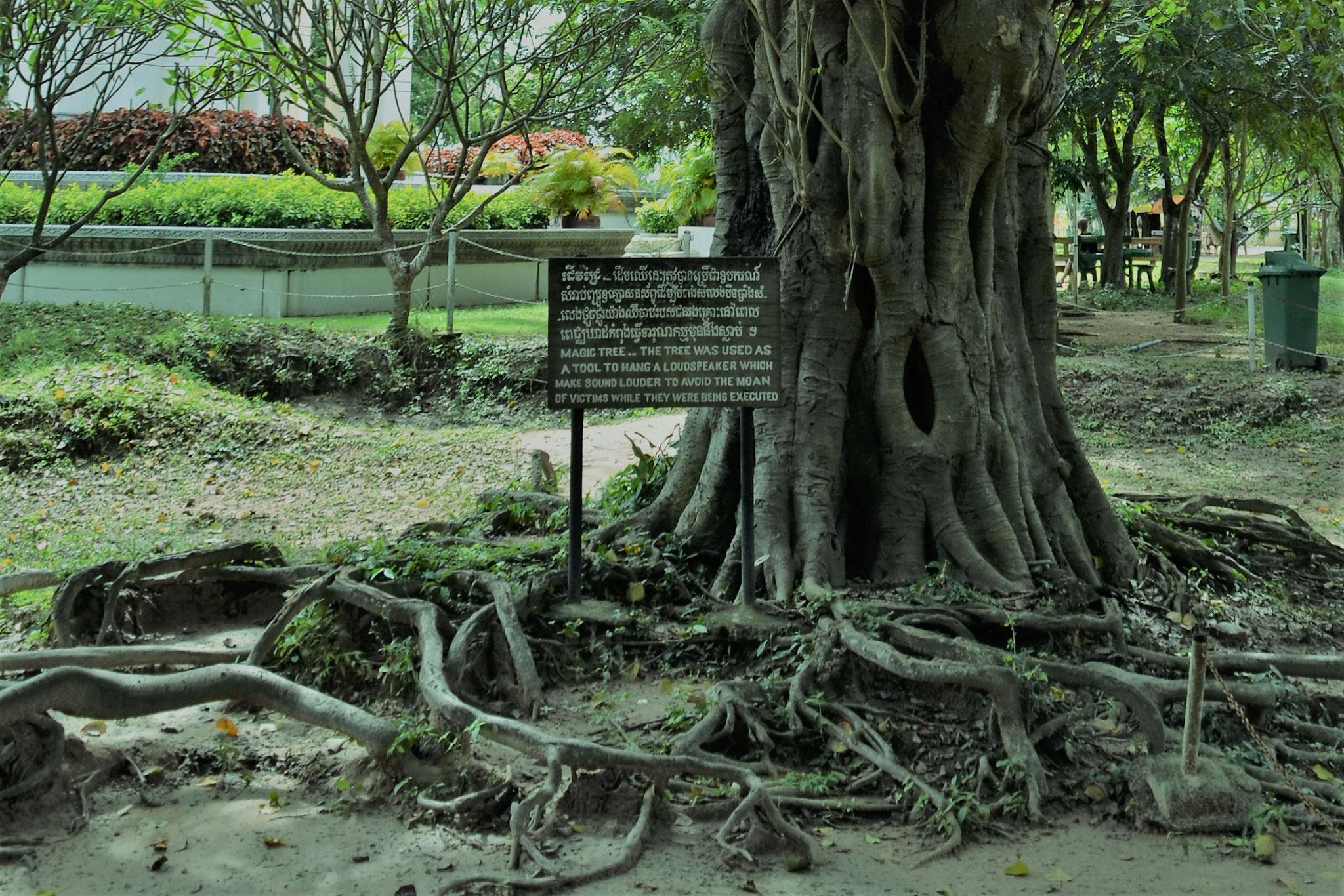 A ¨árvore mágica¨: alto-falantes eram colocados nessa árvores para abafar os gritos de desespero das execuções em massa.