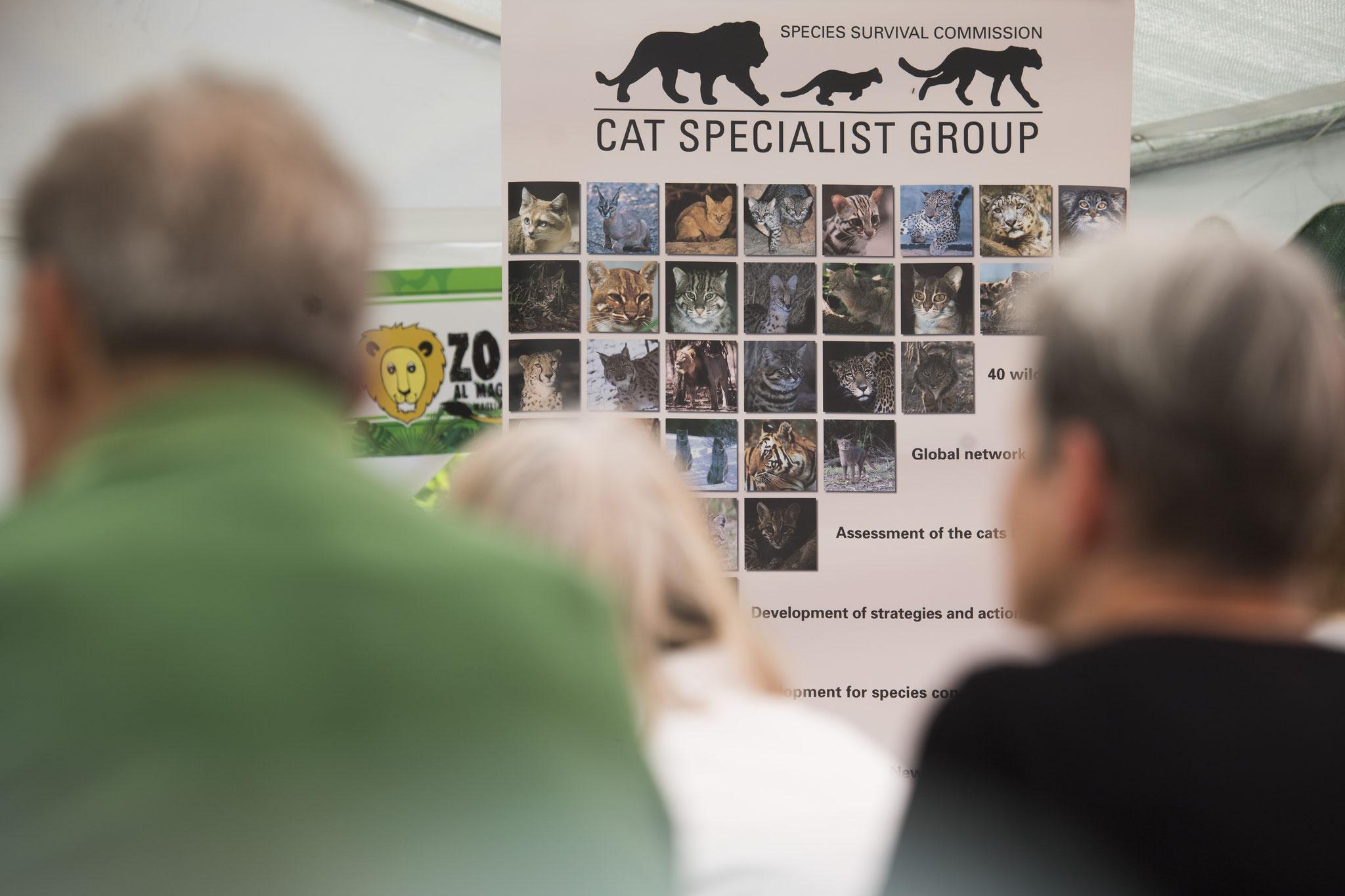 La presentazione della Fondazione Kora.ch