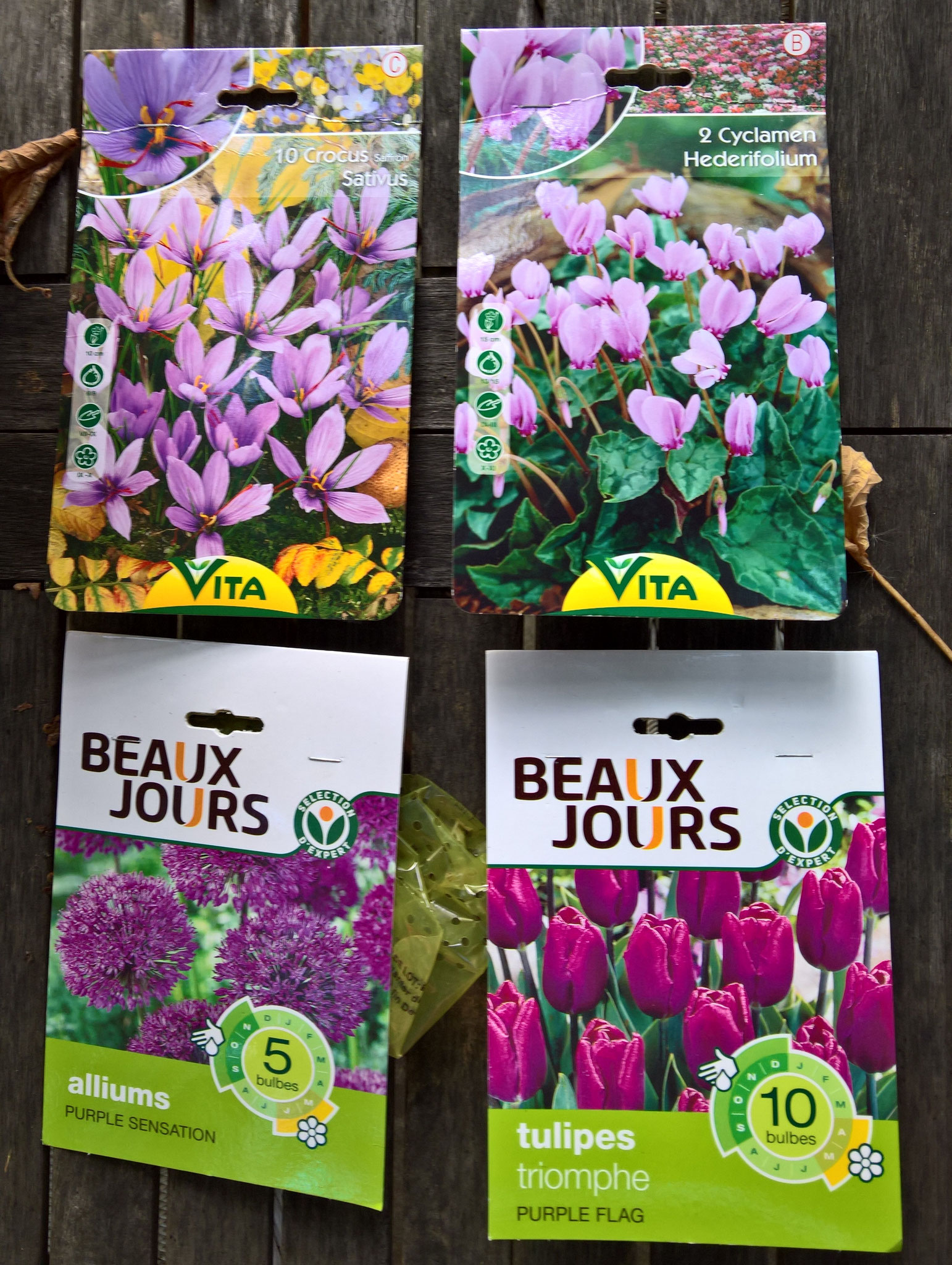 Blumenzwiebeln kommen für das nächste Frühjahr in den Boden