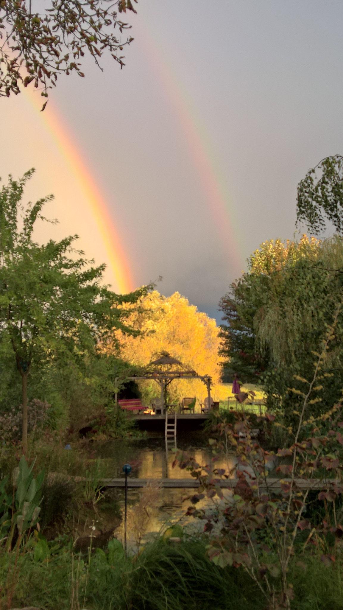 Ein doppelter Regenbogen über dem Biotop