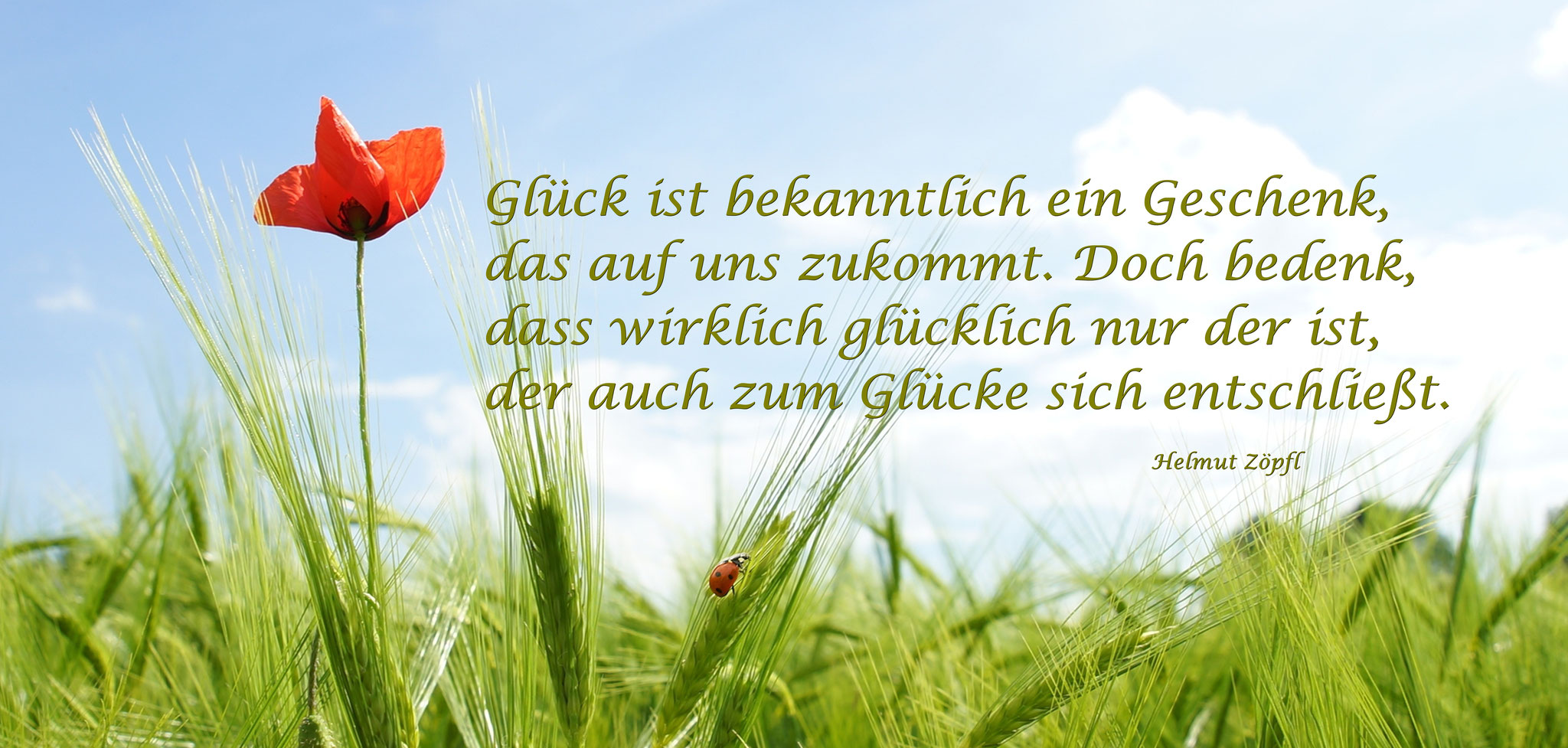 """""""Glück ist bekanntlich ein Geschenk...."""""""