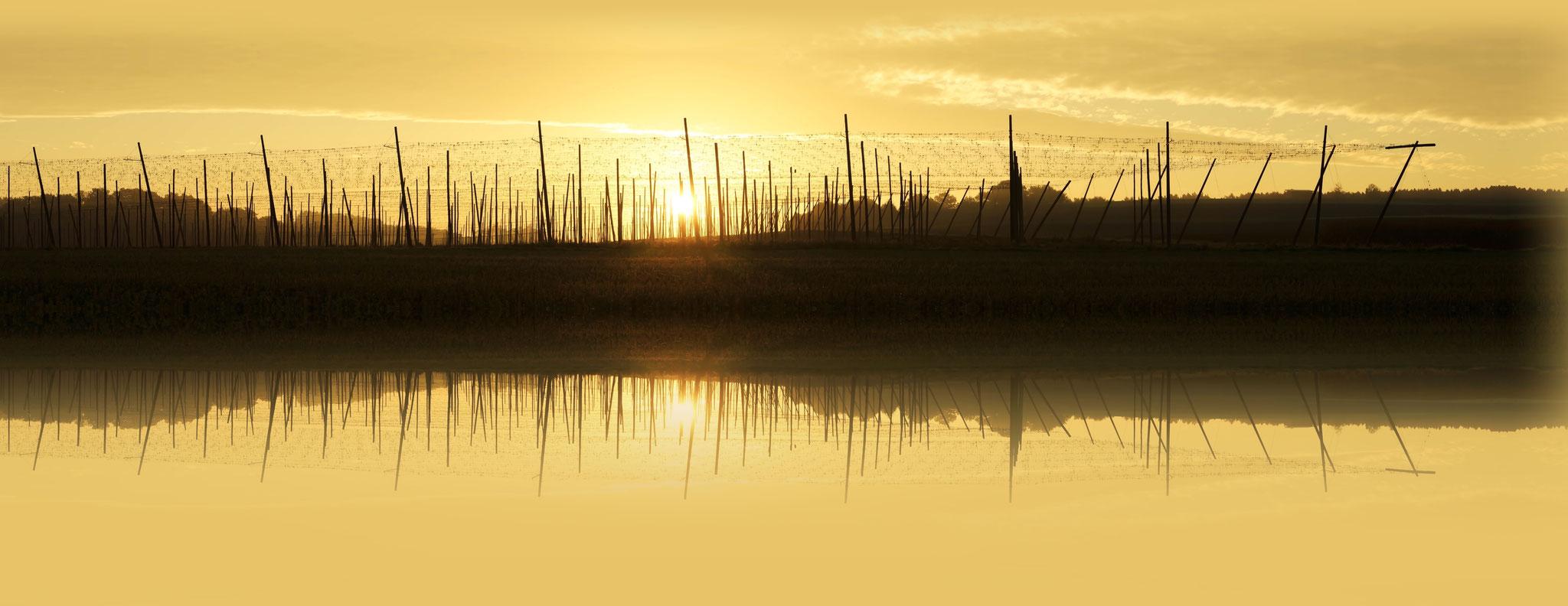 Sonnenaufgang SA/E