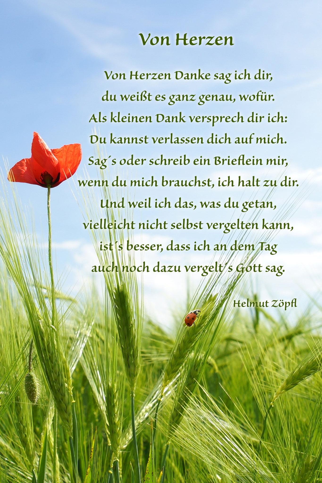 """Von Herzen """"Kornfeld"""""""