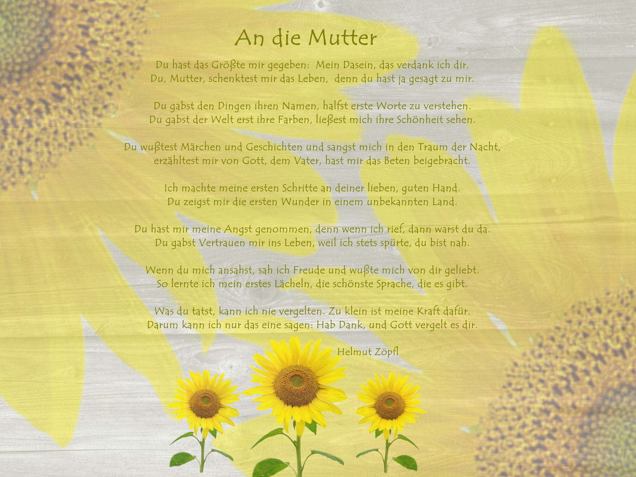 "An die Mutter ""Sonnenblumen querf."""