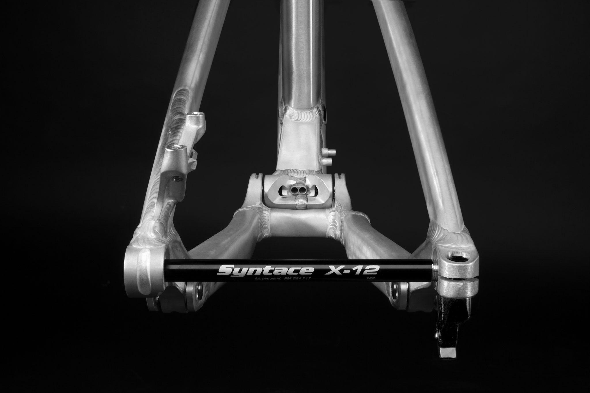 Syntace X-12 mit Evo6 Hinterbau