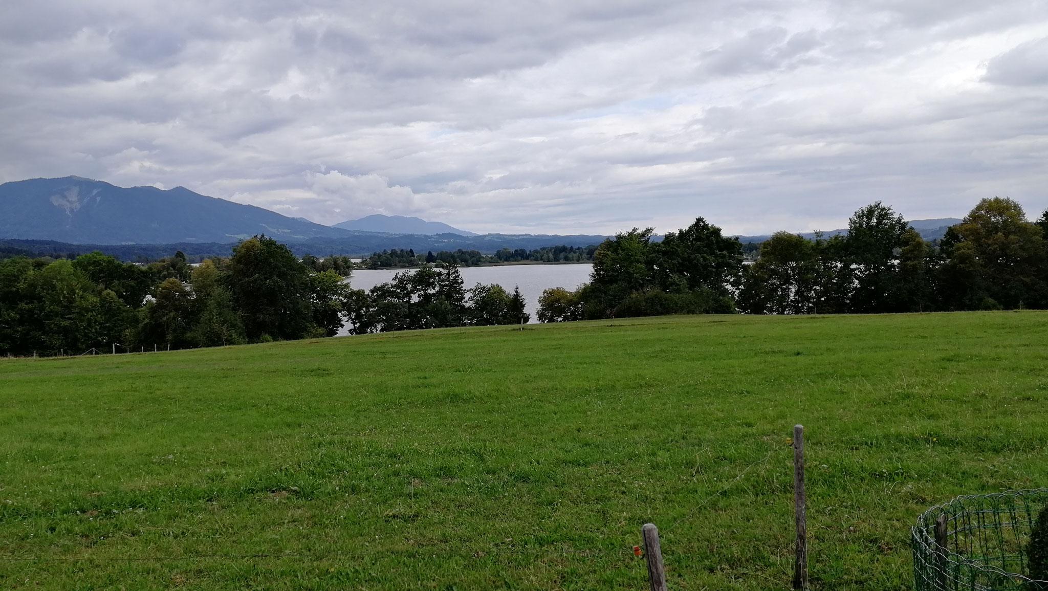 Blick zum Staffelsee