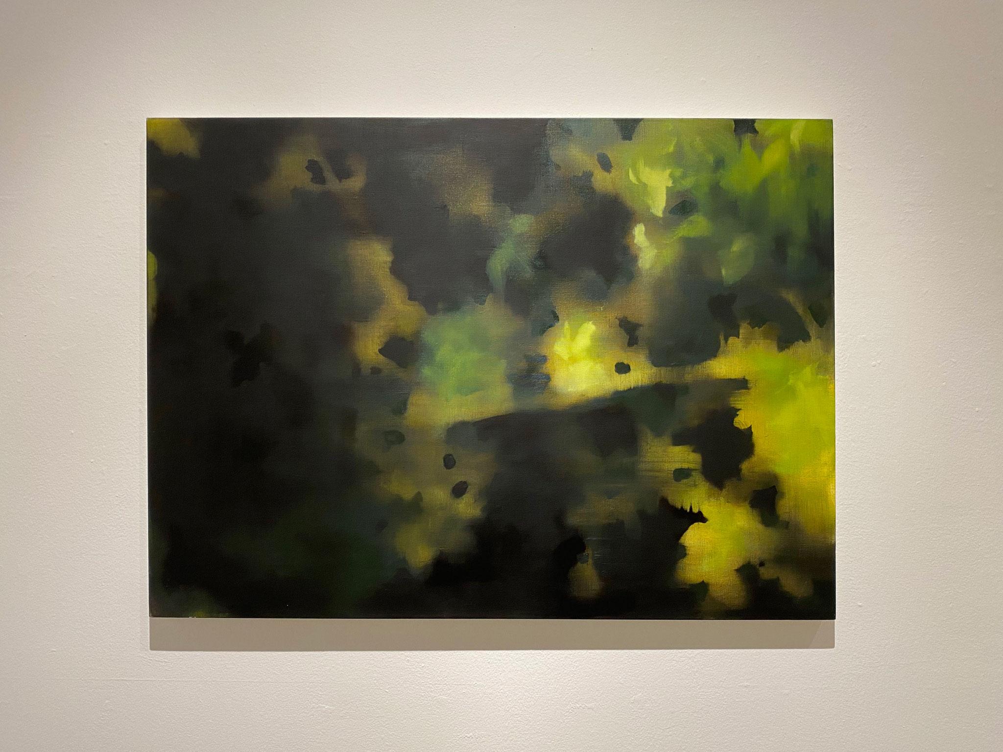 ここにあけにくゆる,652×910,キャンバス、油彩,2020