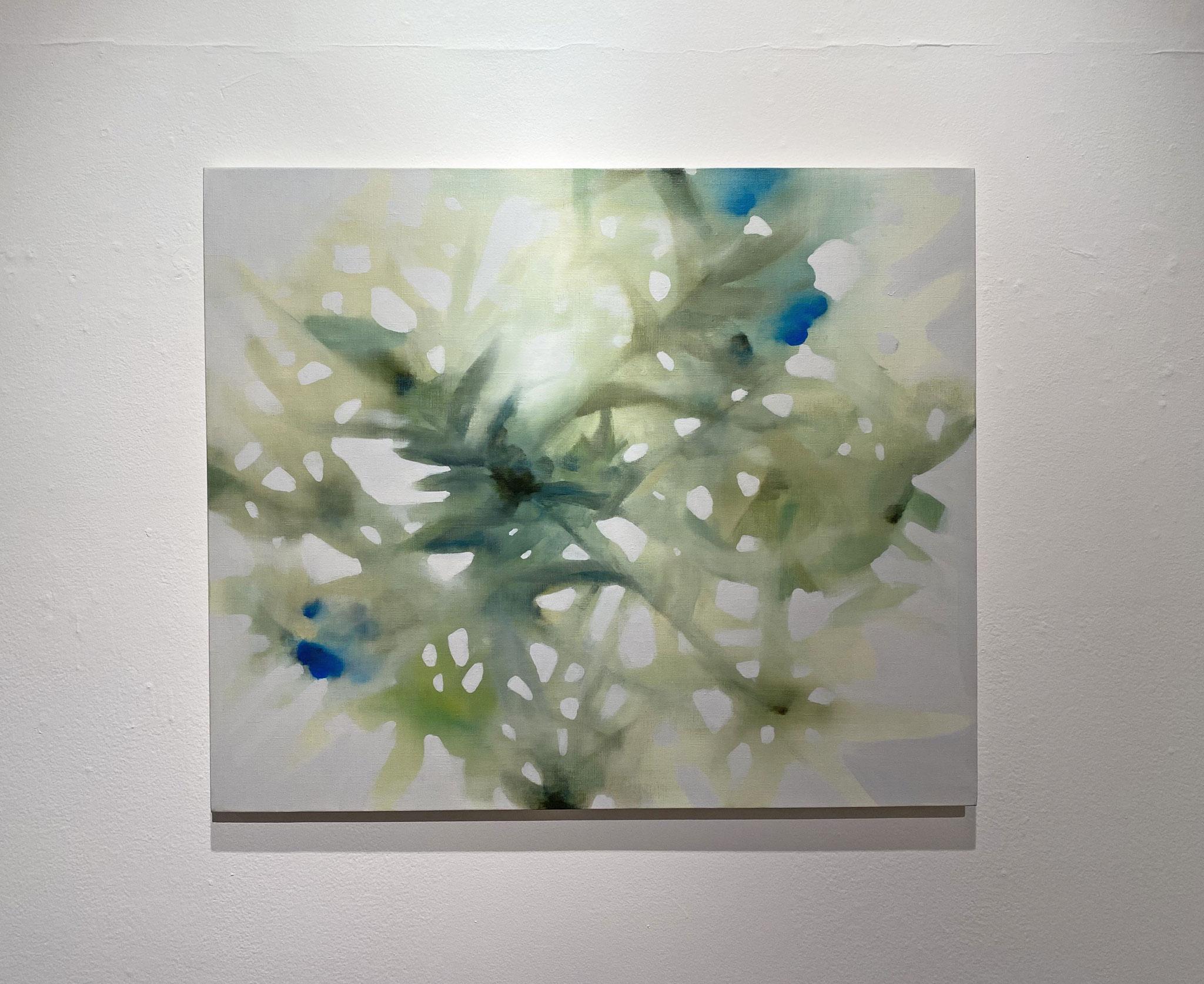 ひのさして,606×727,キャンバス、油彩,2020
