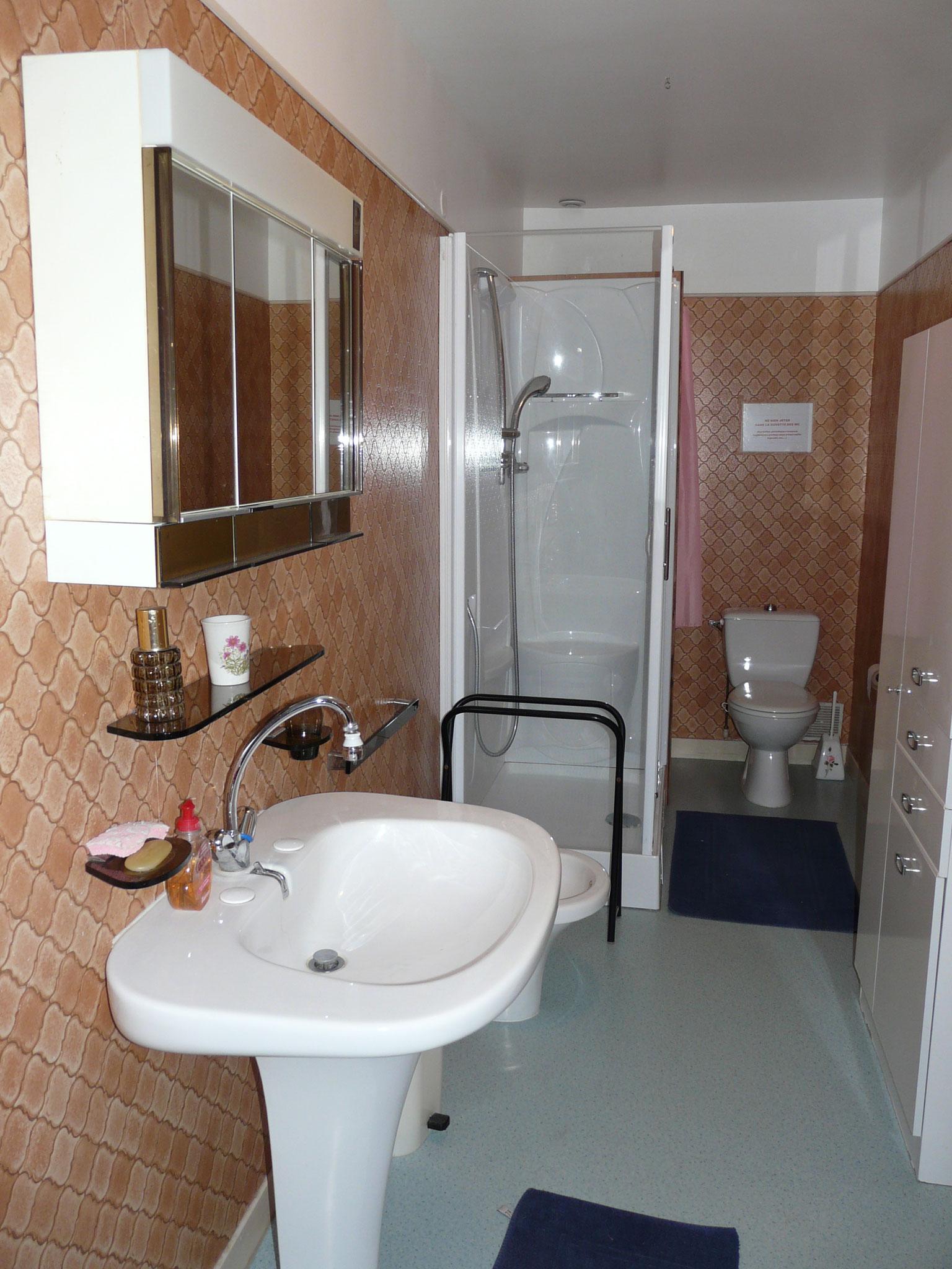 salle d'eau, avec cabine de douche et wc