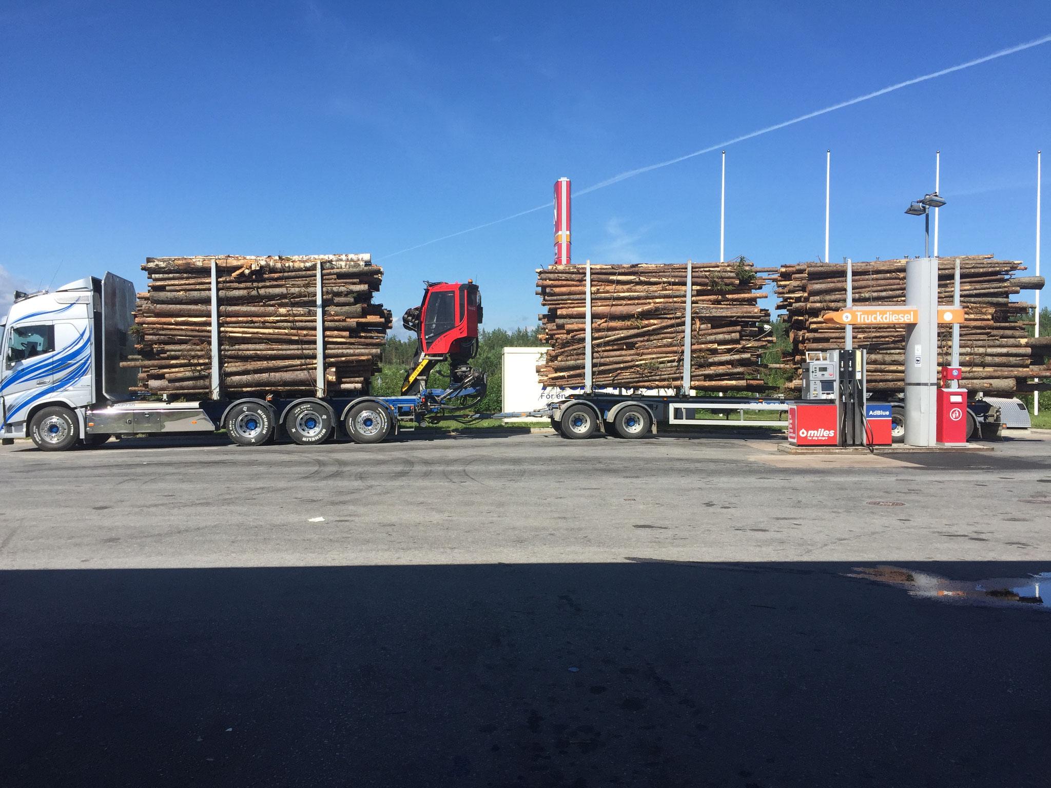 Umfangreiche Holztransporte