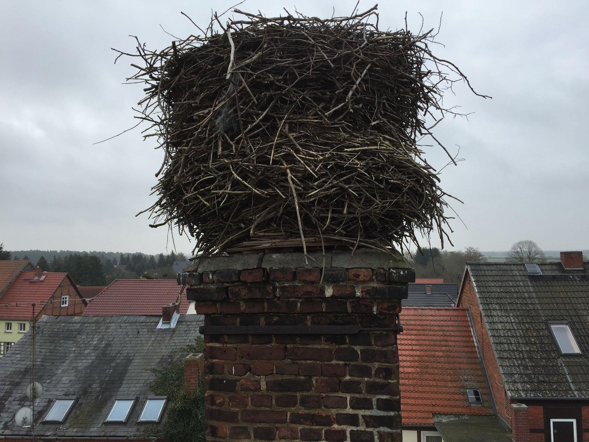 Bad Wilsnack: Über die Jahre ist dieses Nest recht hoch und etwas instabil geworden (VORHER).