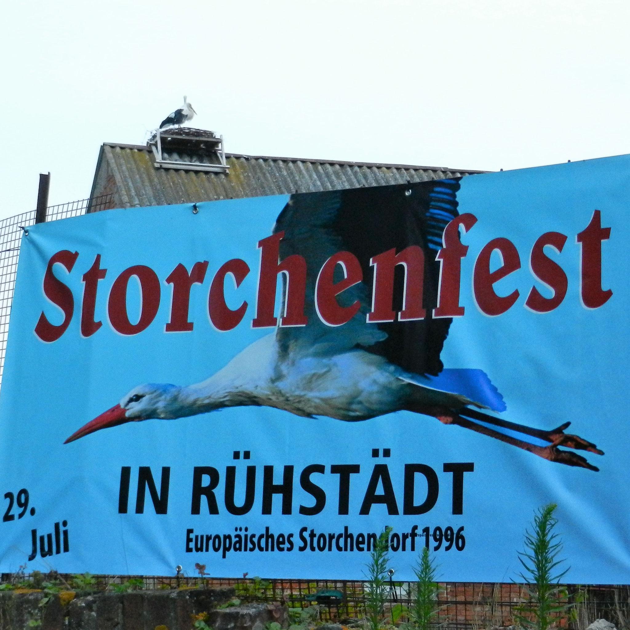 Das 31. Storchenfest steht vor der Tür
