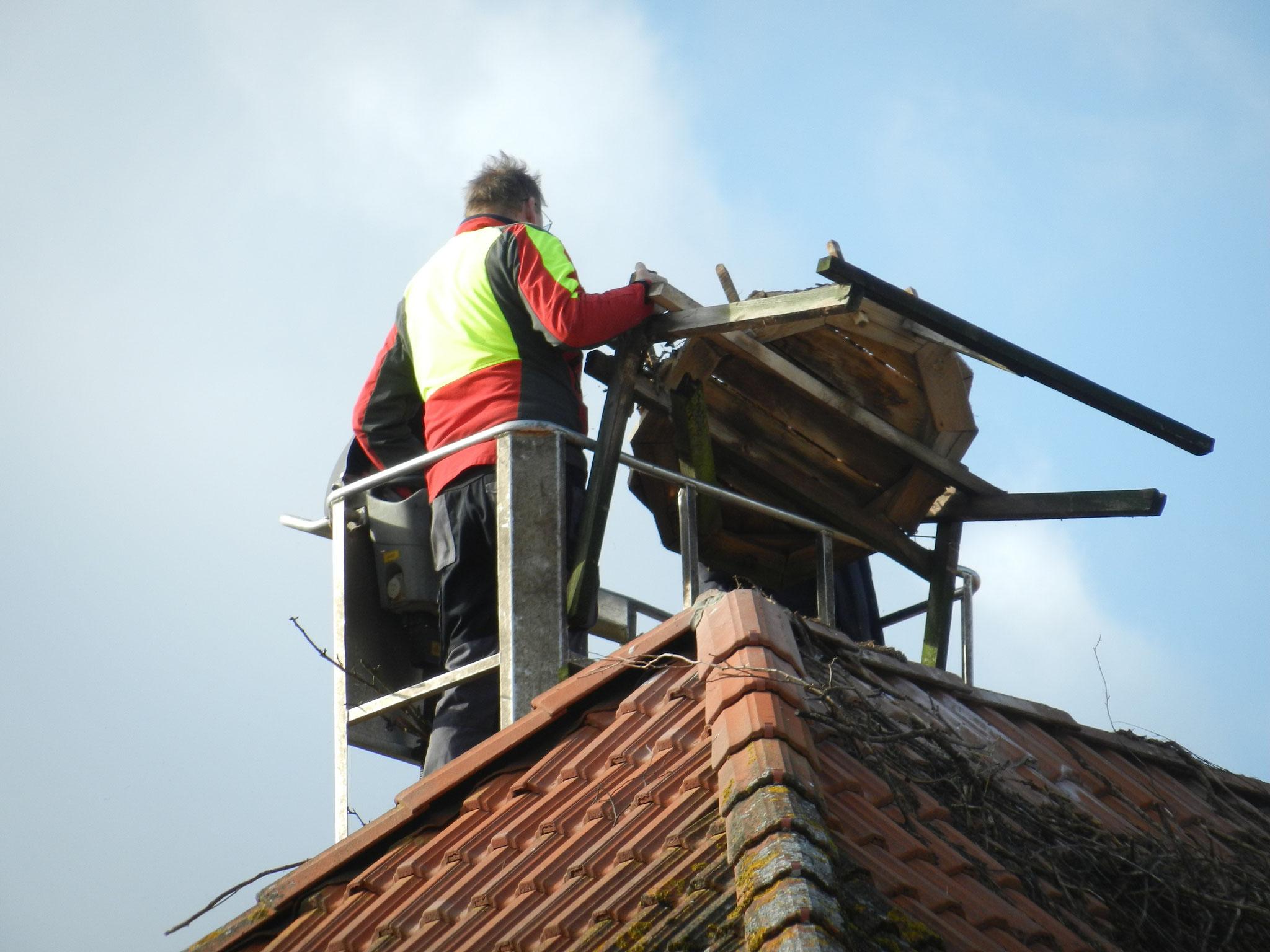 ... und anschließend wird die Holzkonstruktion heruntergenommen ...