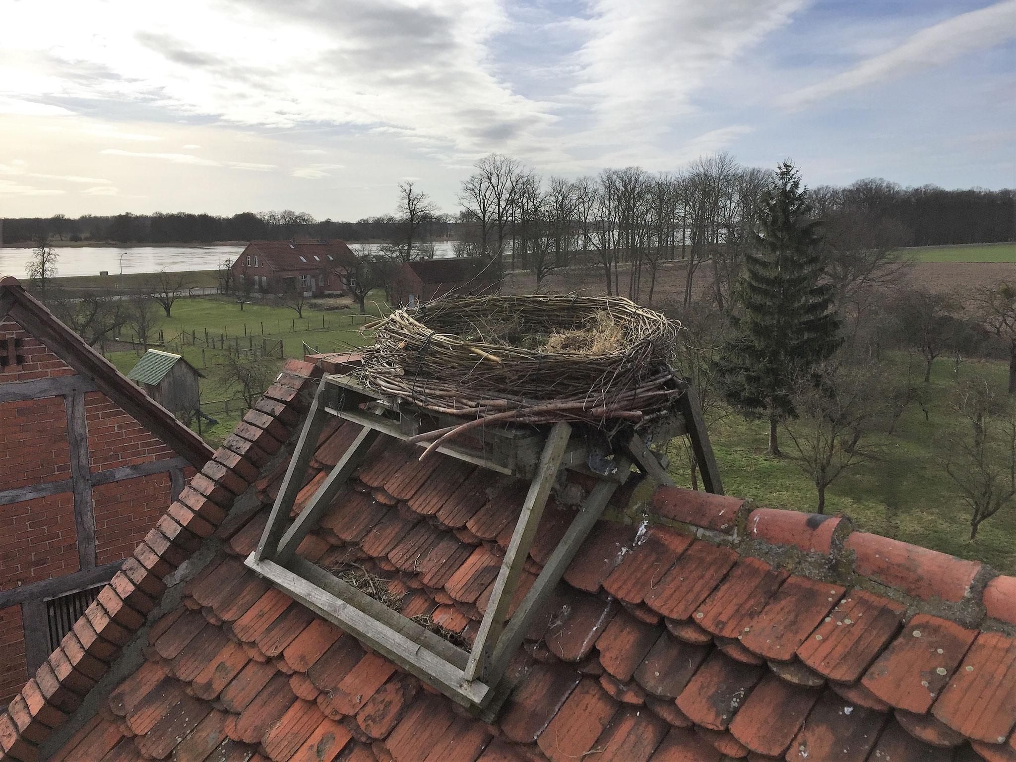 Ein Extra-Kranz wurde hier auf ein bestehendes Nest montiert.
